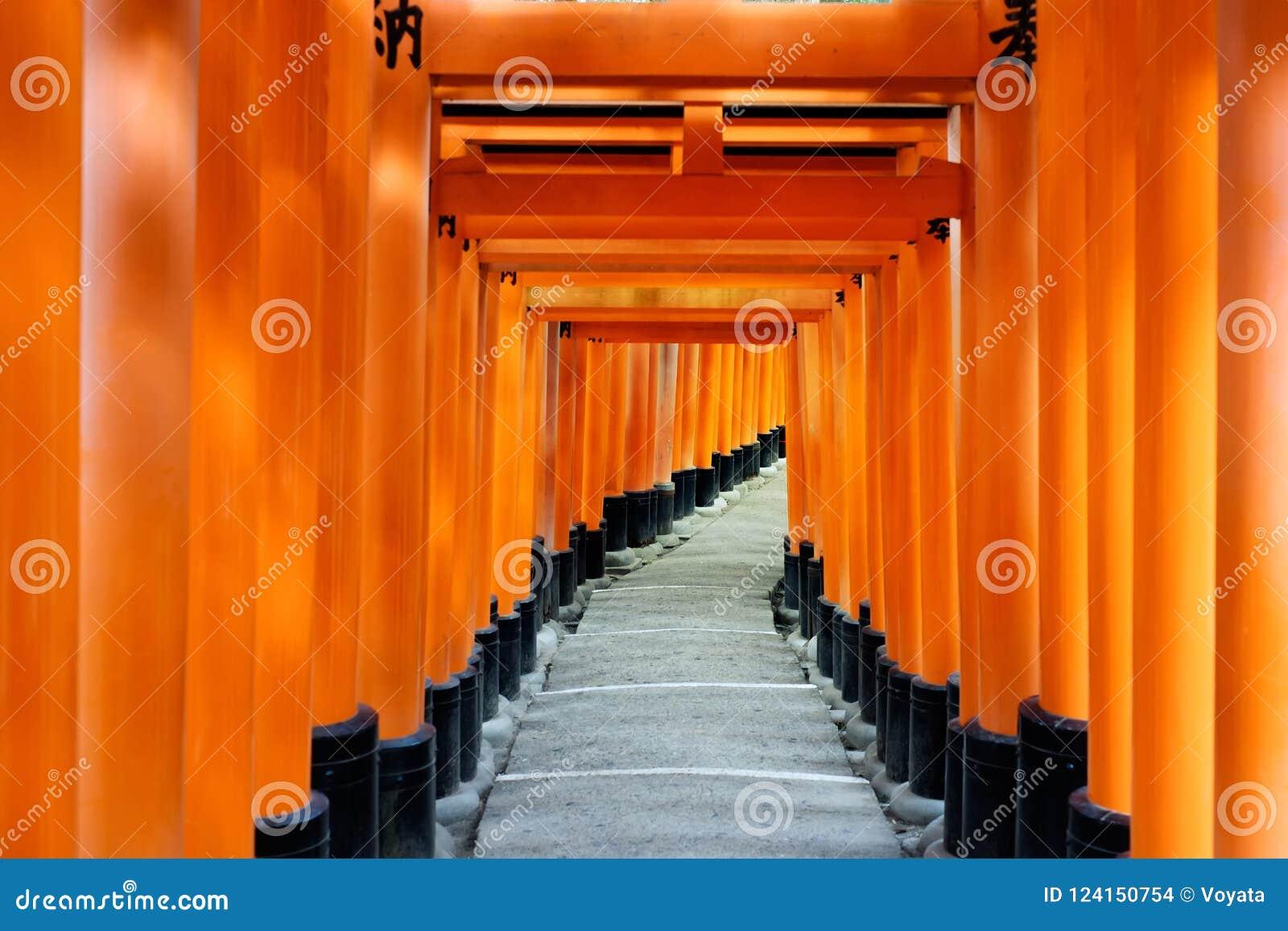 Maneira vermelha da porta, corredor do torii em Fushimi Inari Taisha, Kyoto, Japão