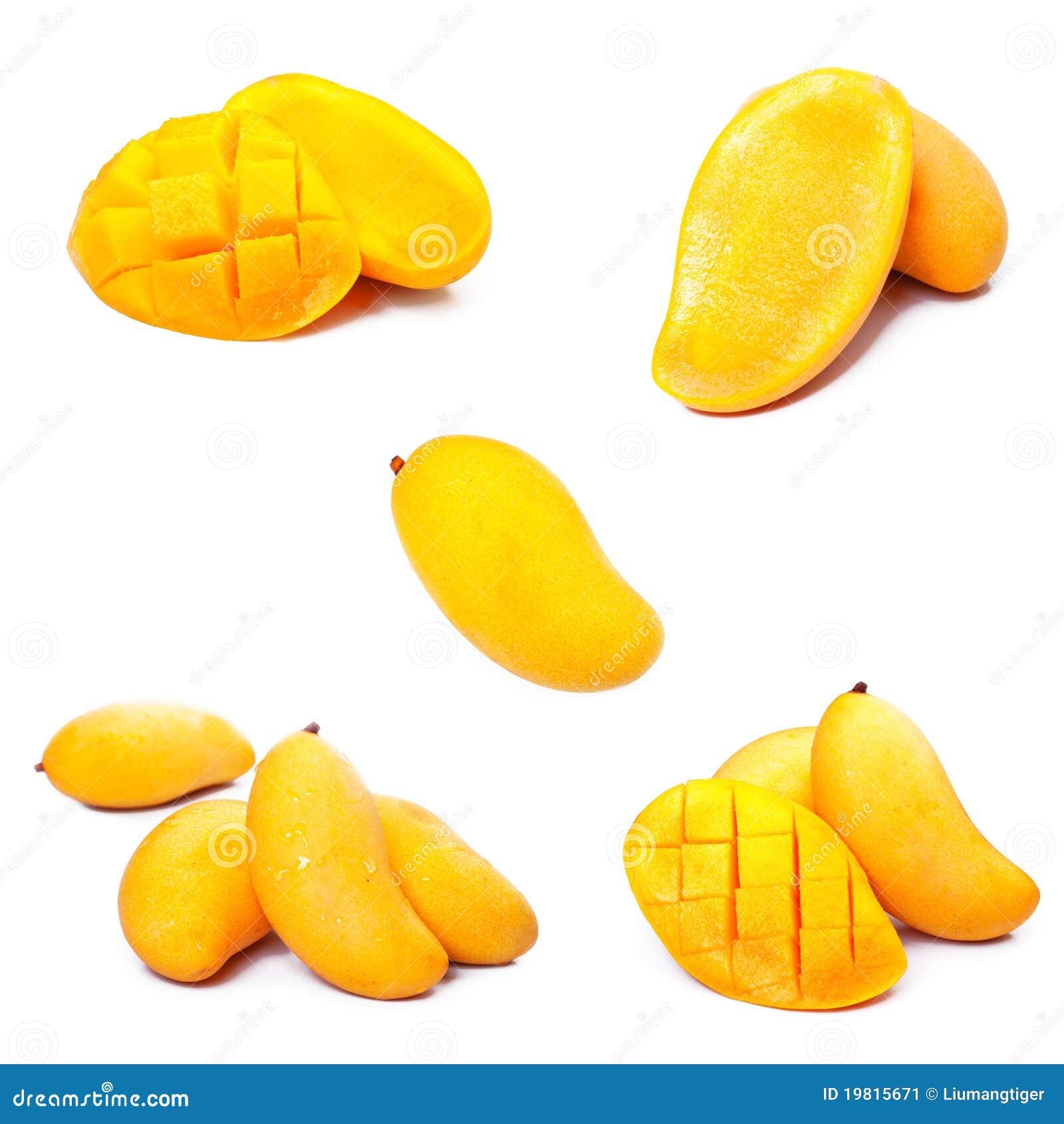 Red mango business plan