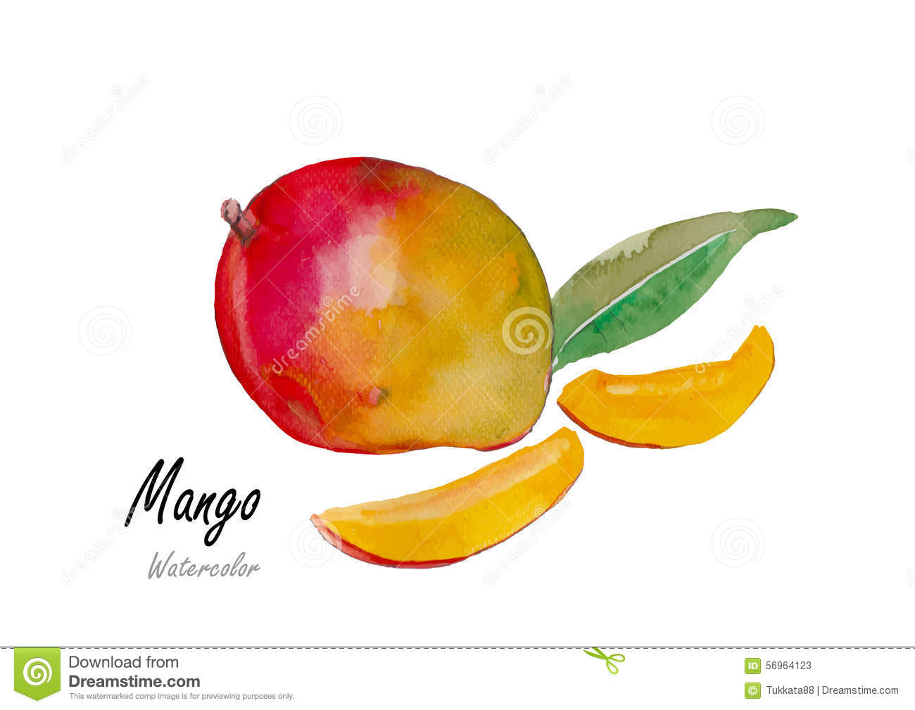 how to draw a real mango