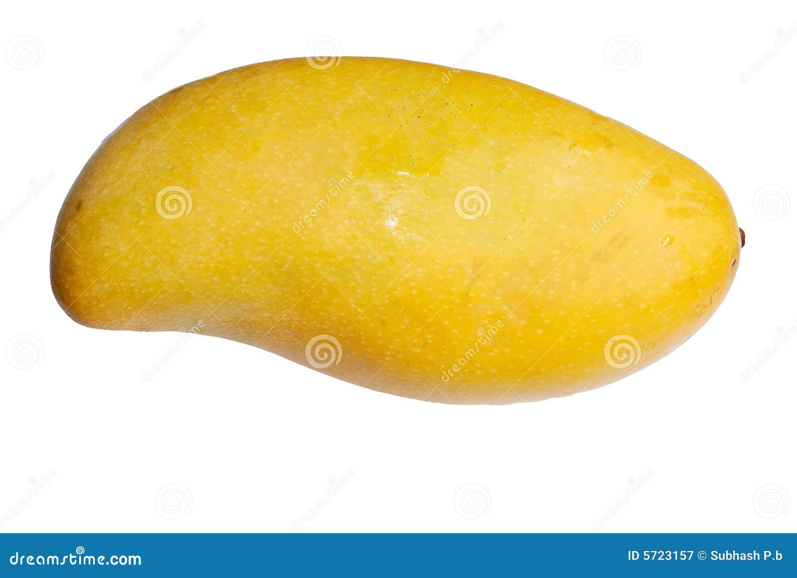Mango isolated