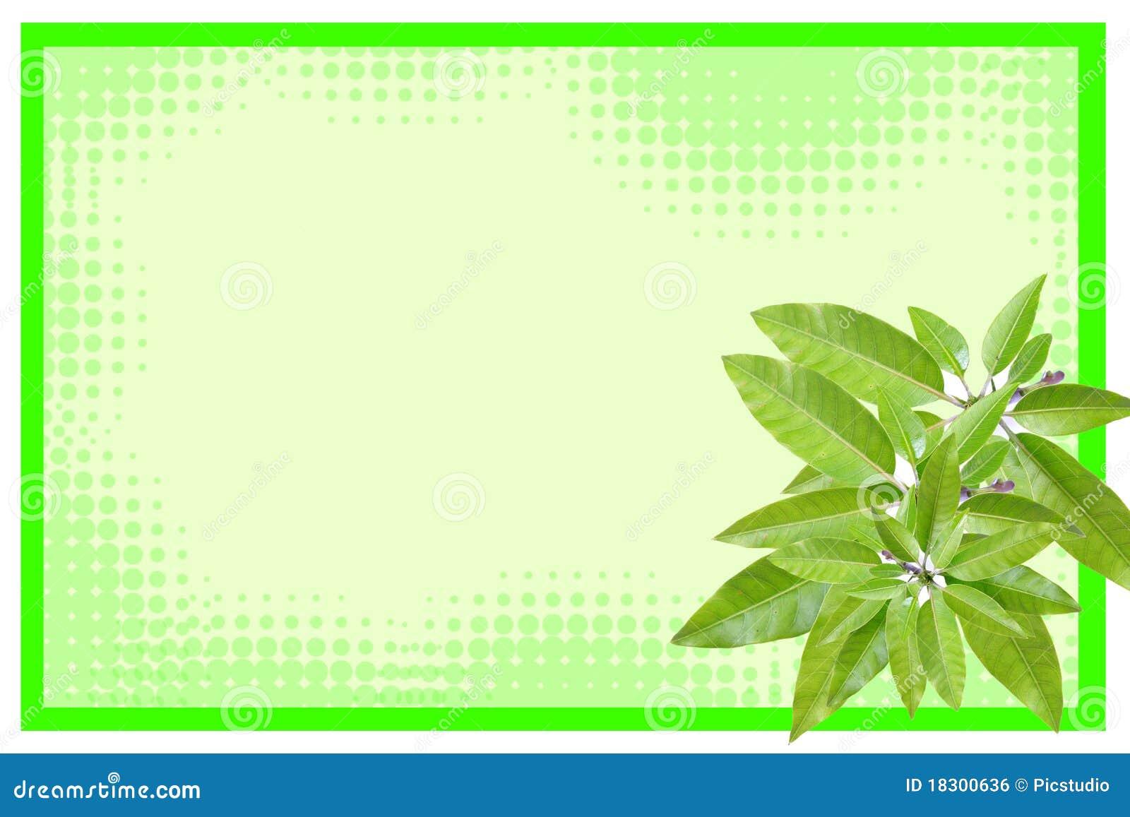 Mango leaves frame stock illustration. Illustration of jungle - 18300636