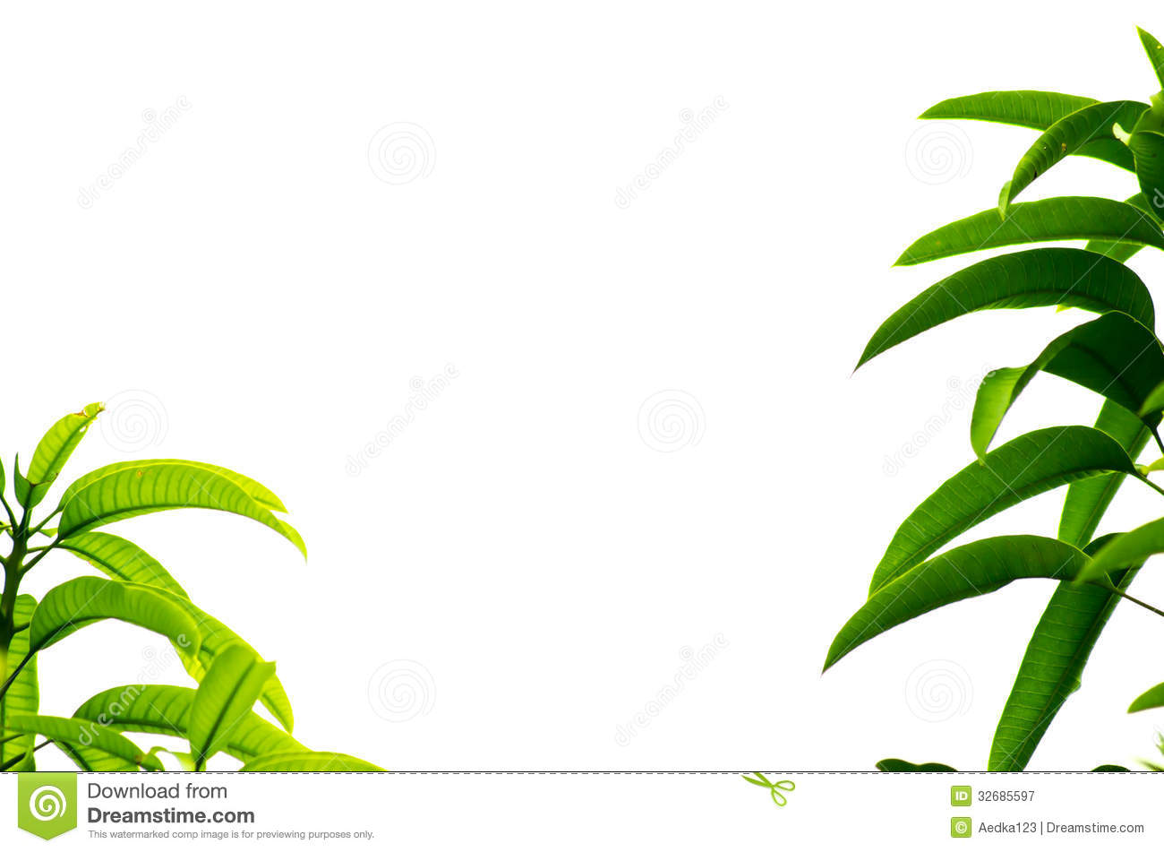 forest landscape vector IA