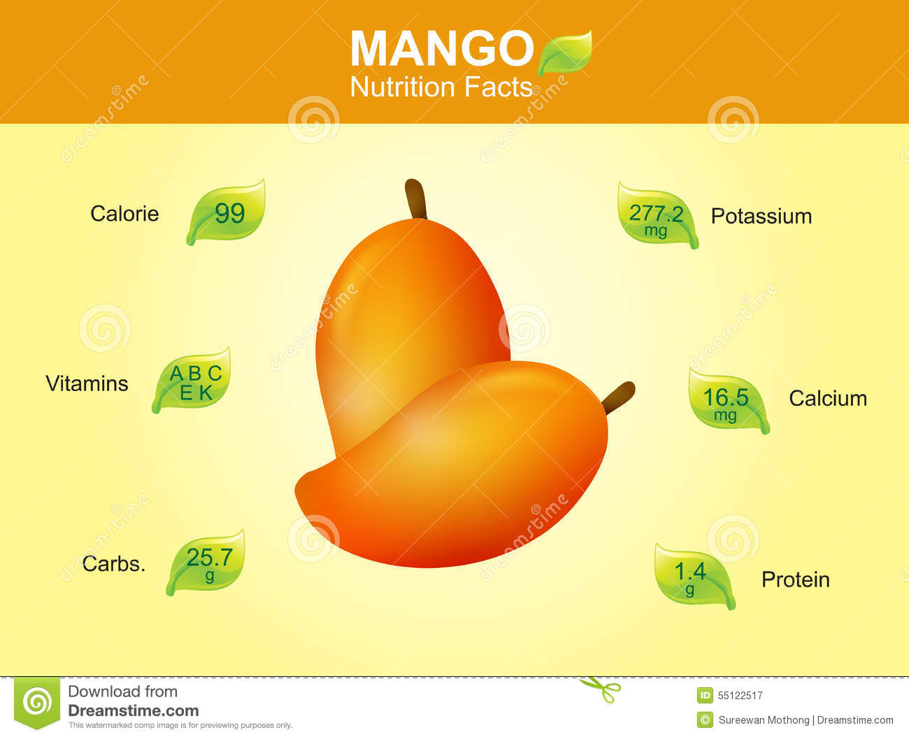 Mango Nutrition Facts  Mango Fruit With Information  Mango Vector Stock Vector