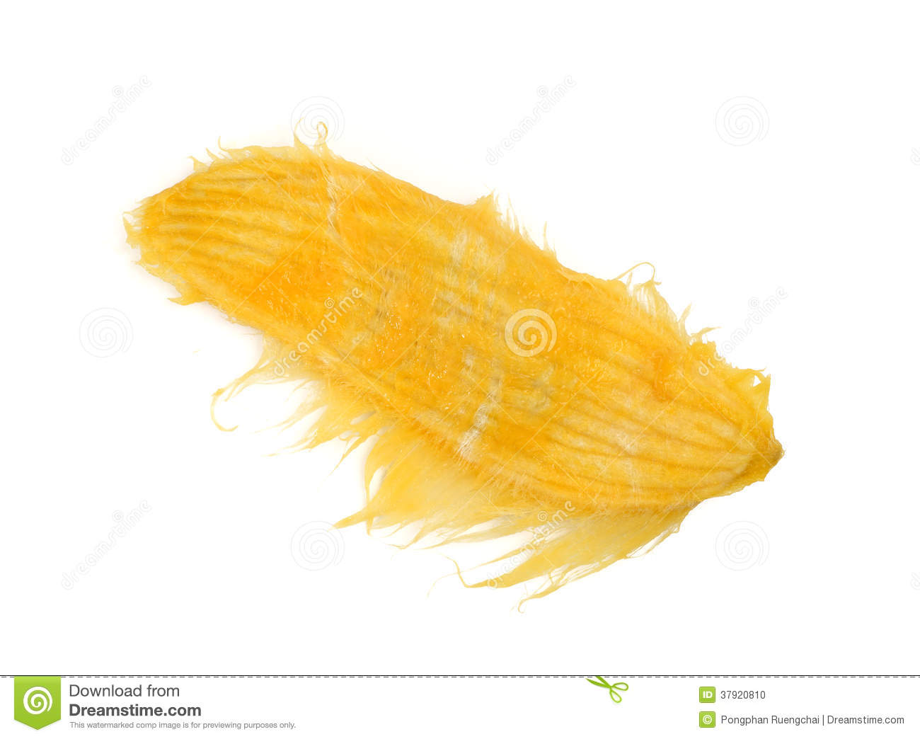 Mango Seed Stock Photo - Image: 37920810
