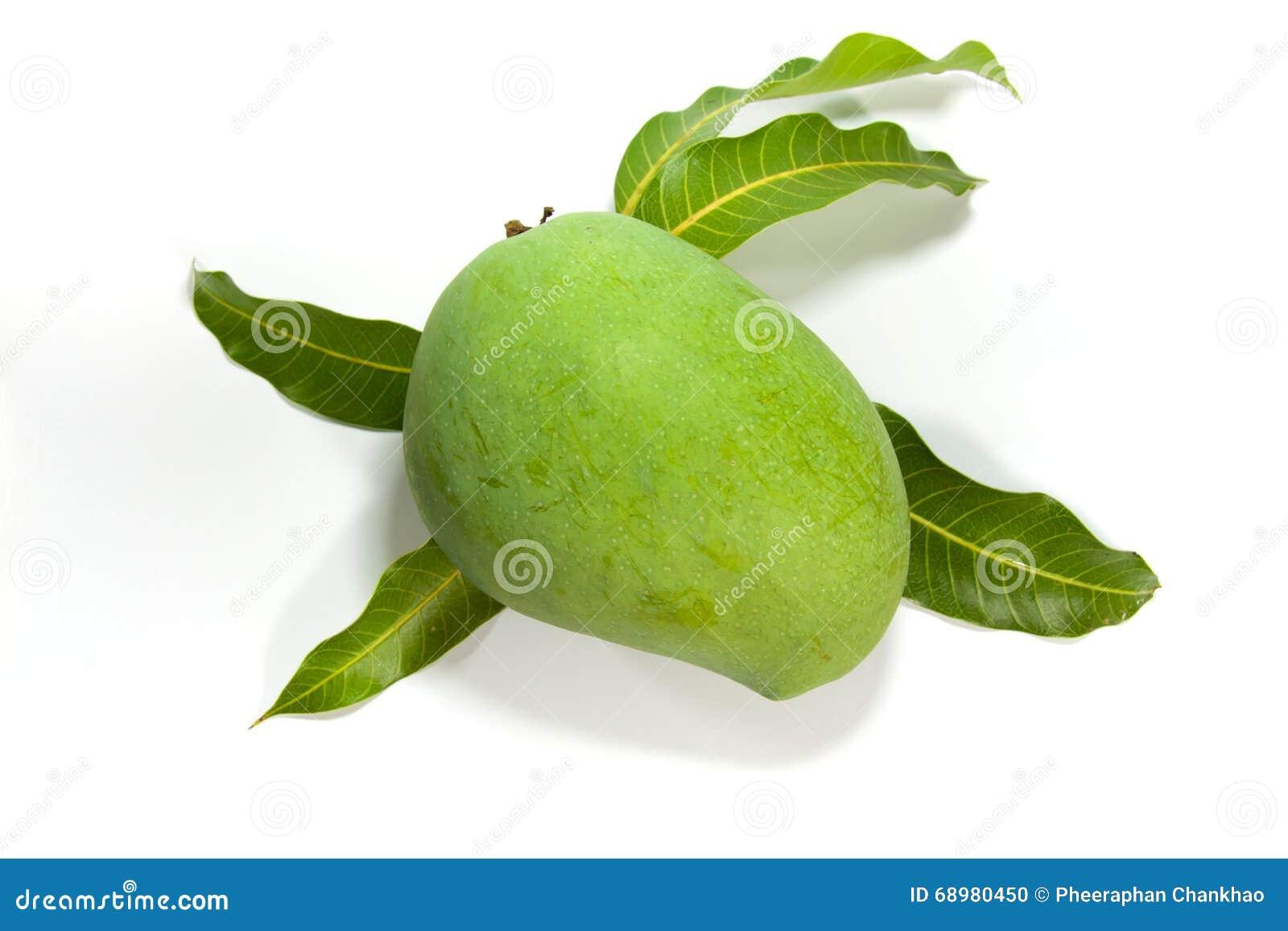 Mango verde en el fondo blanco