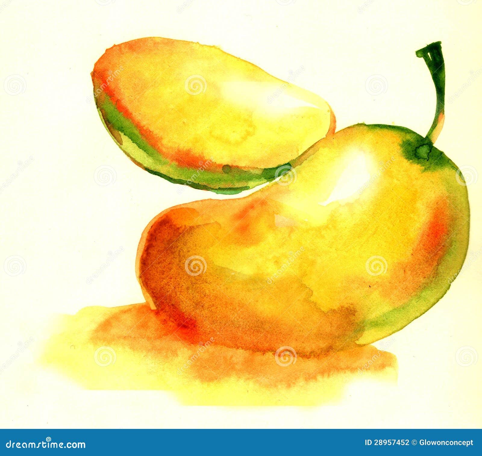 Mango z sekci ilustracją odizolowywającą