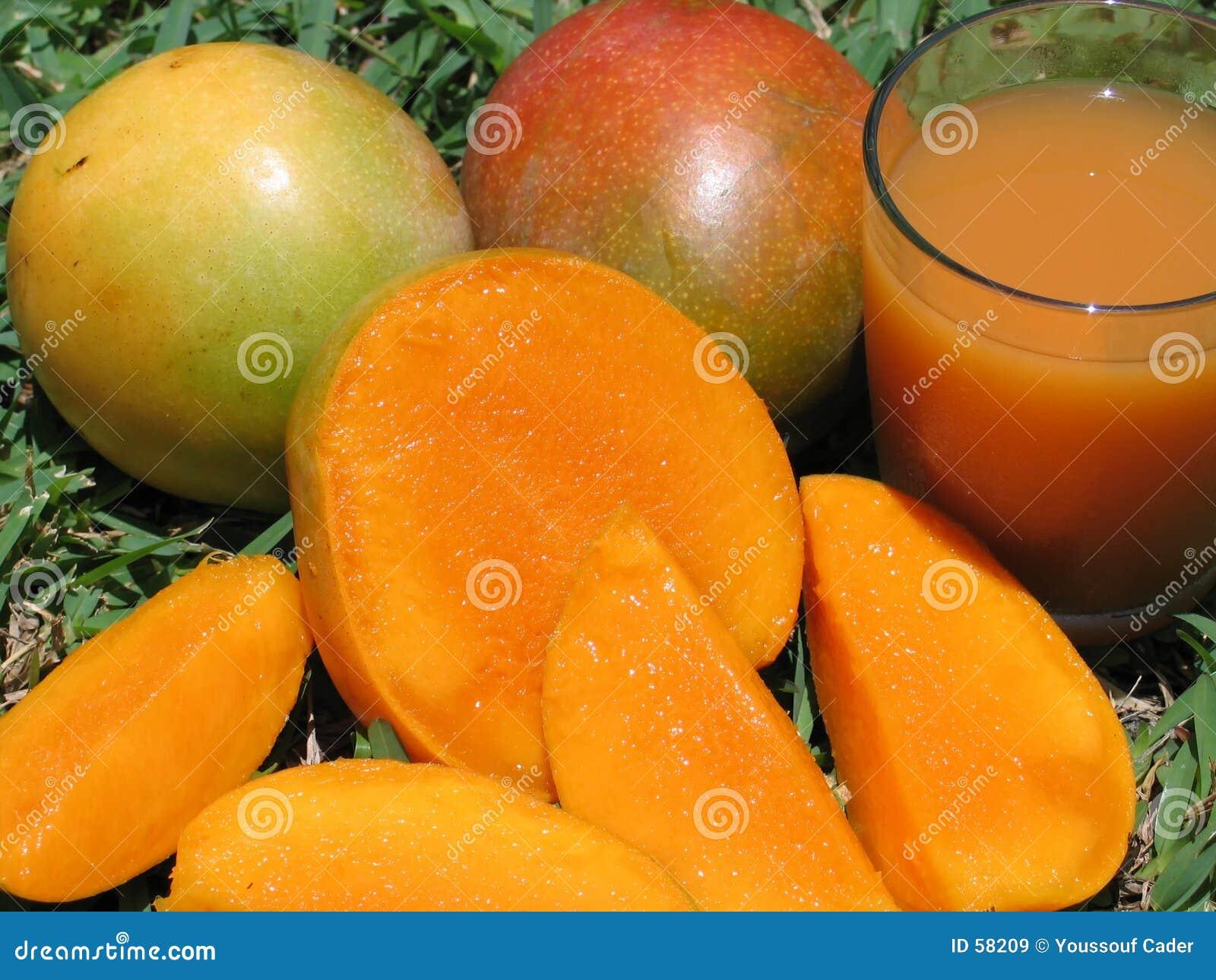 Mangoes-0963