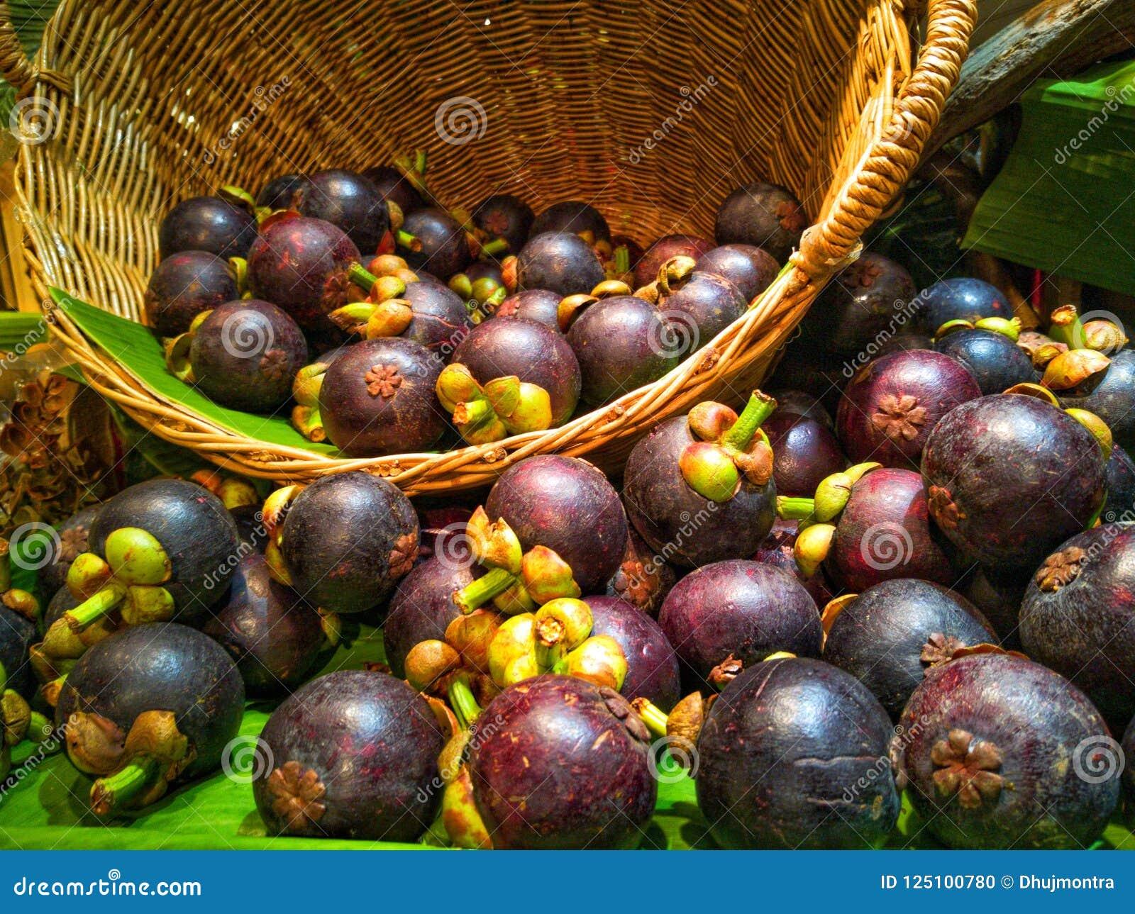 Mangoesteen drottningen av frukt