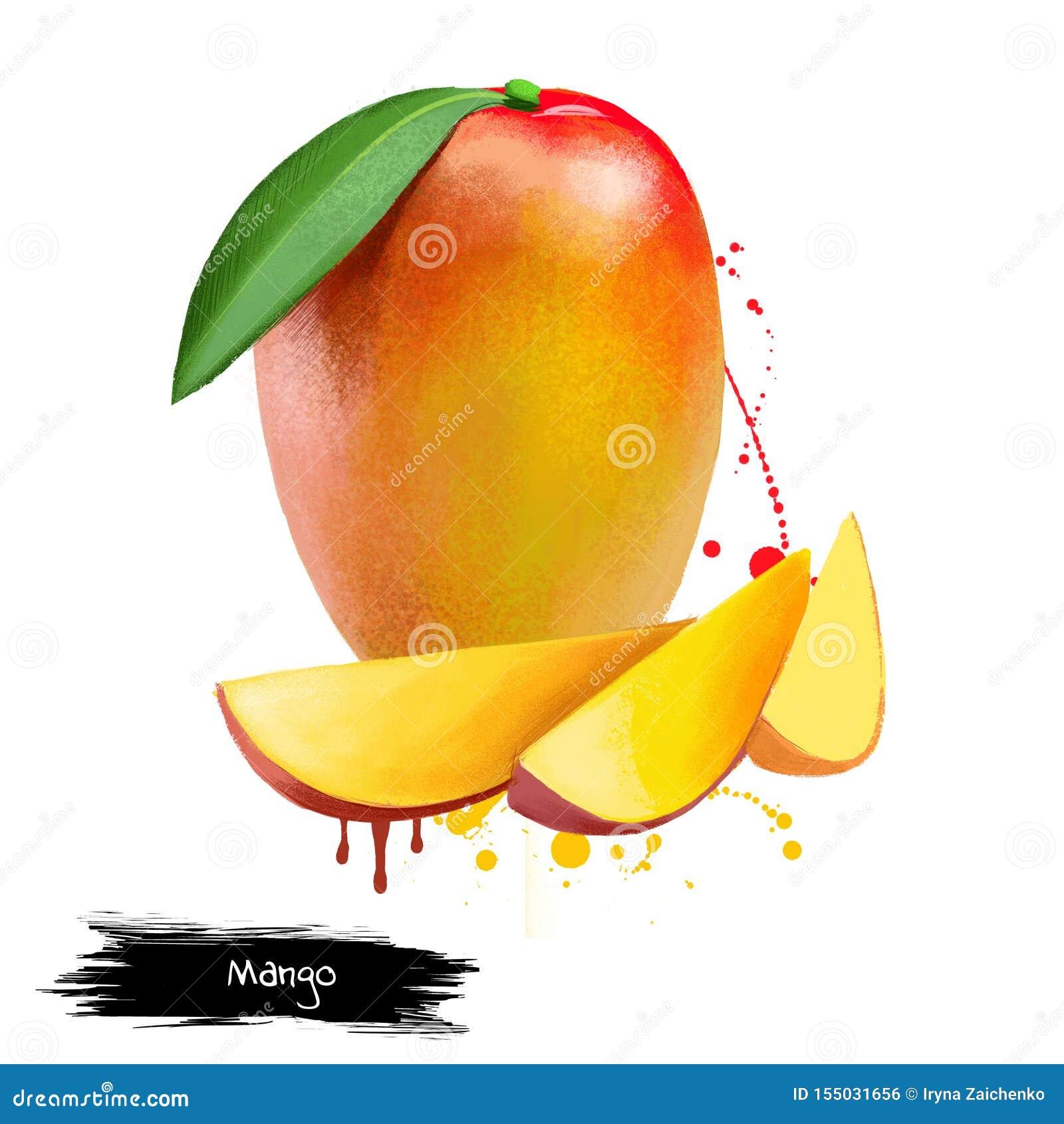 Mangokuber och skivor bakgrund isolerad white