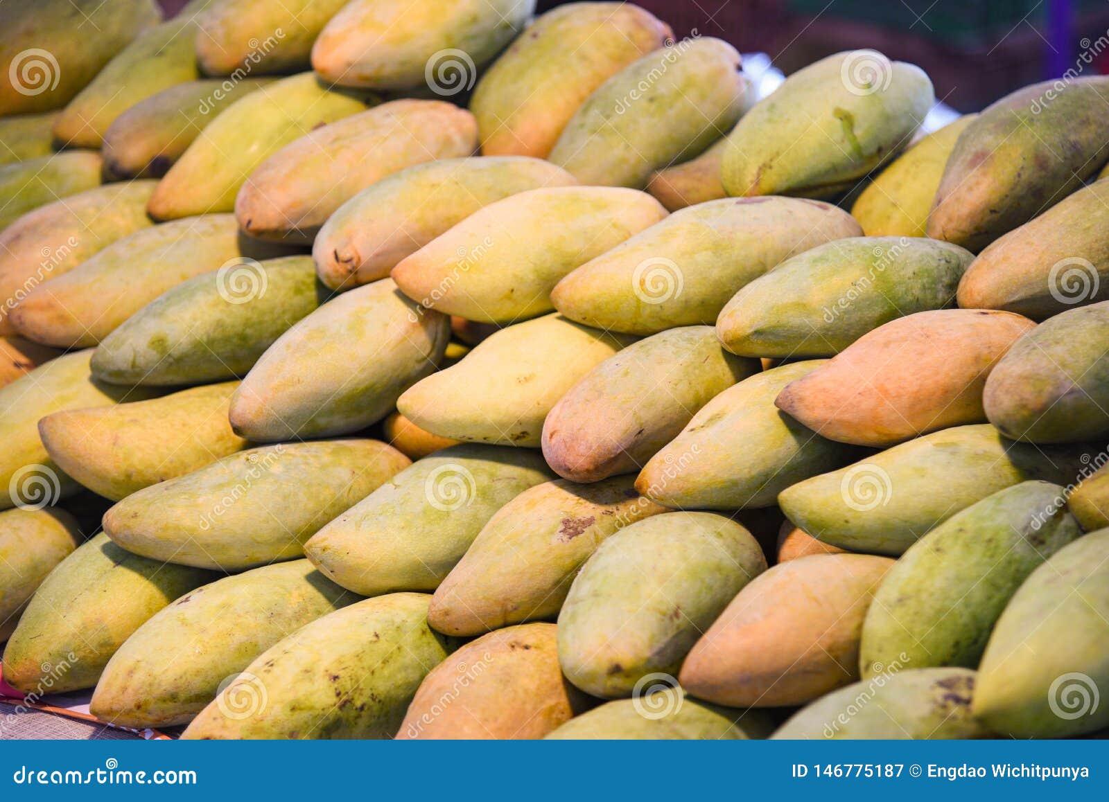 Mangomarknad - jordbruk för jordbruksprodukter för ny mango för skörd ny organiskt i den till salu sommaren