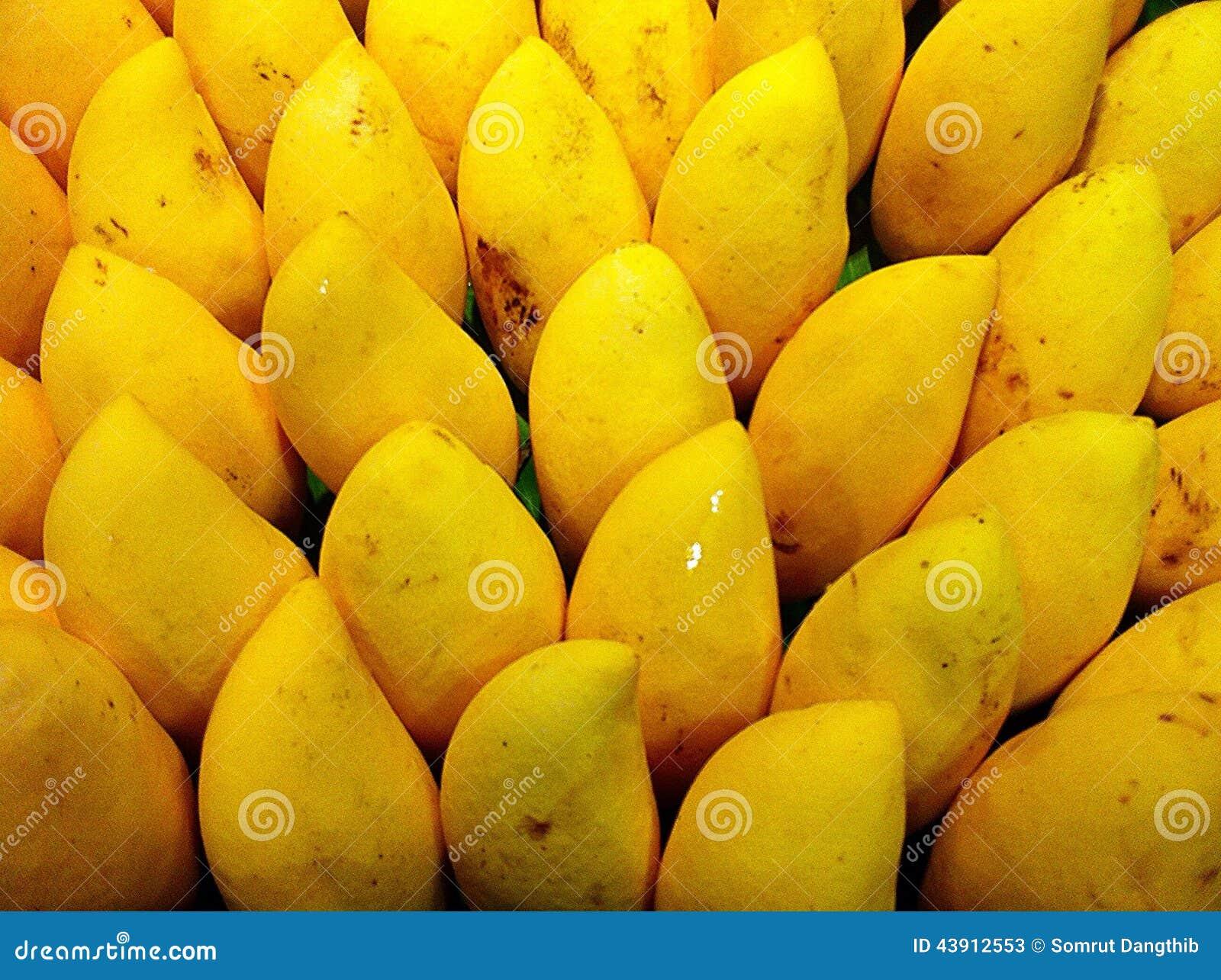 Mangopflaume