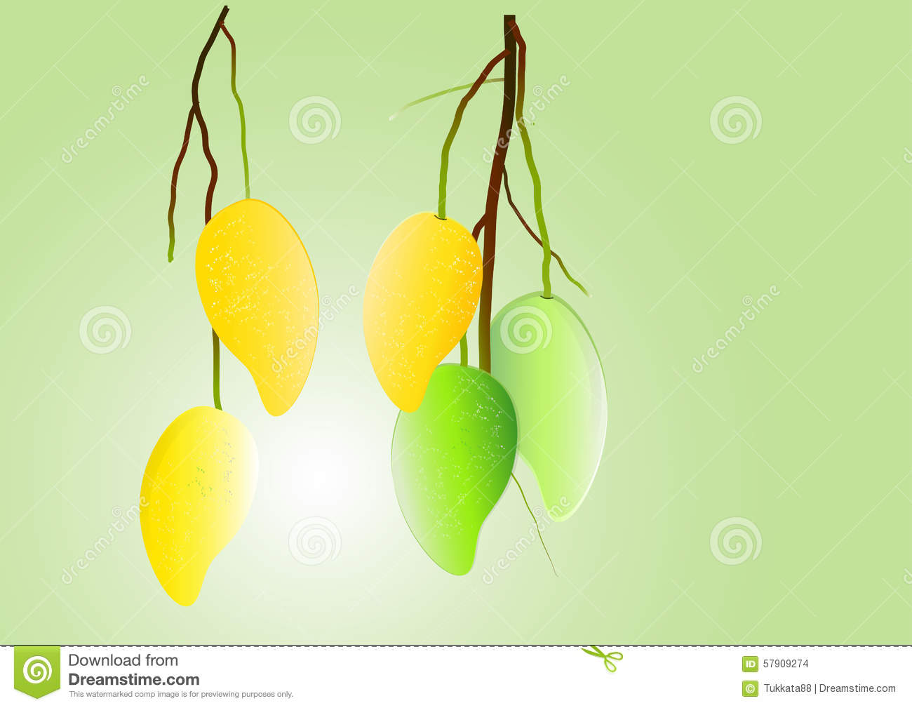 mangos background green mango and yellow hanging vector