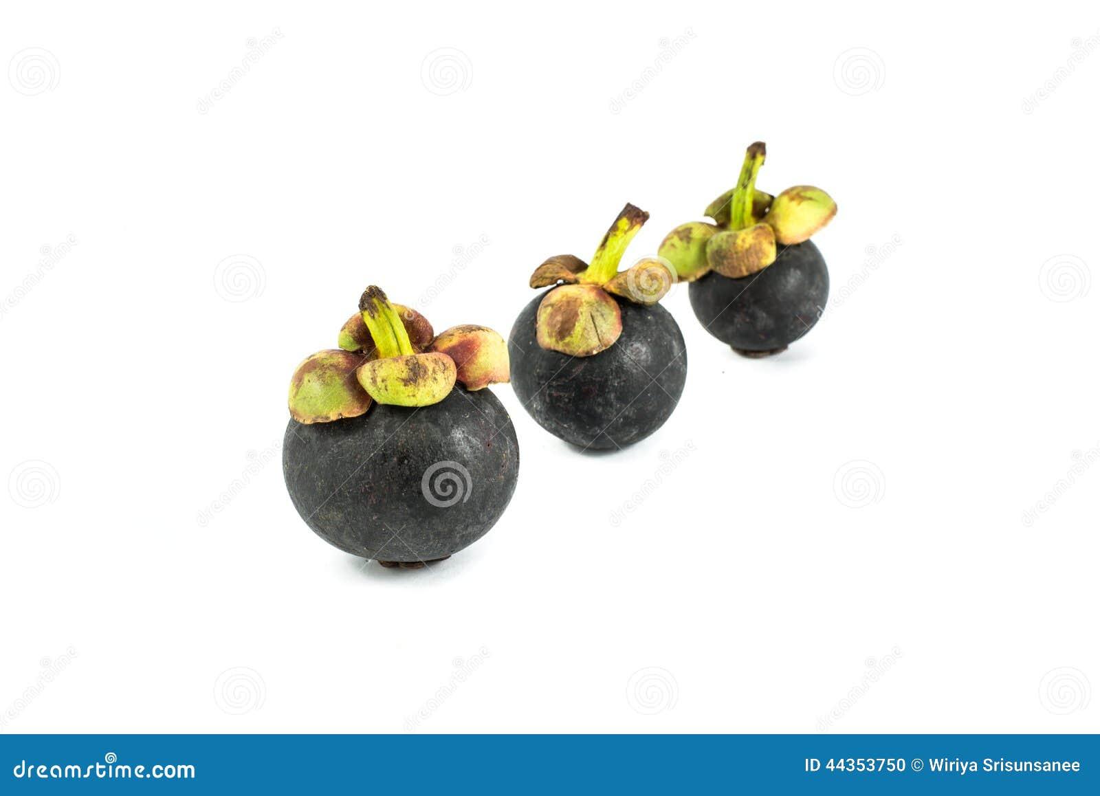 Mangostano