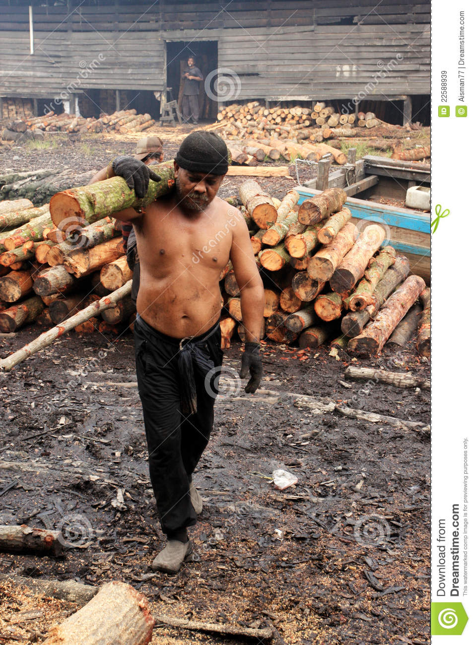 Mangrove Wood Charcoal Worker Editorial Stock Image - Image