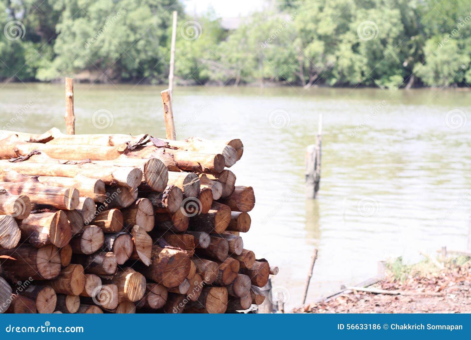 Mangroveträ för kol