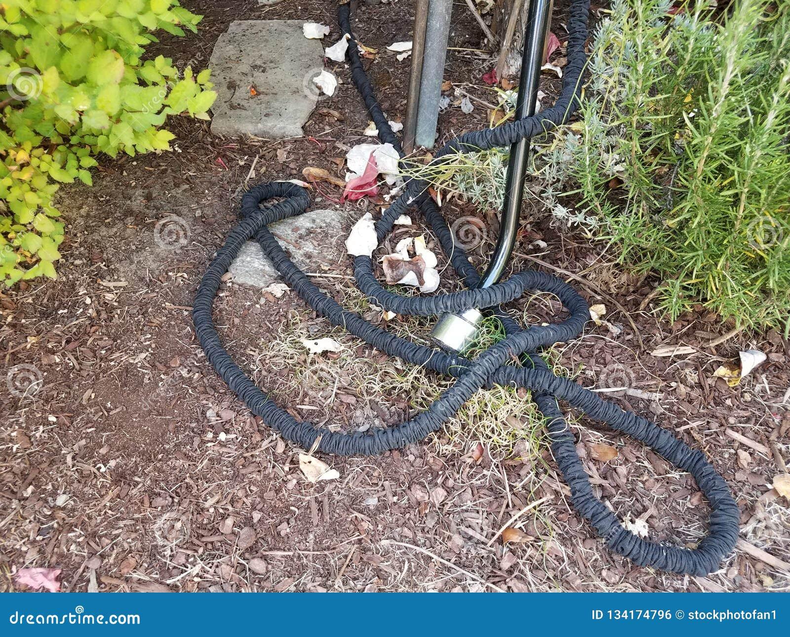 Mangueira de jardim flexível preta na palha de canteiro marrom
