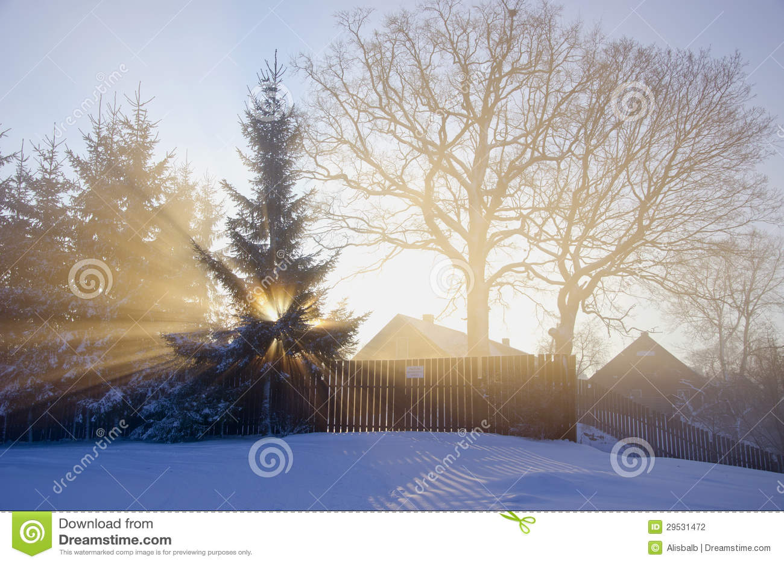 Manhã do inverno na vila com sol e névoa
