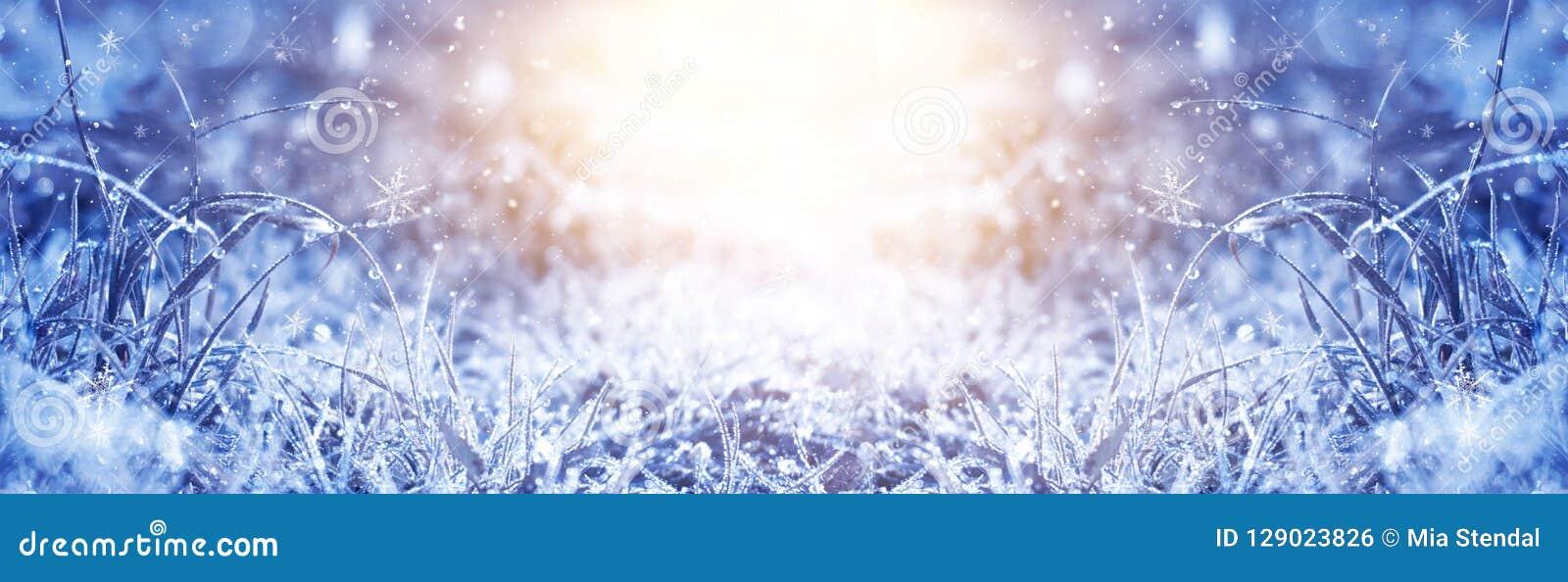 Manhã gelado do inverno Fundo da neve do inverno, cor azul, flocos de neve, luz solar, macro