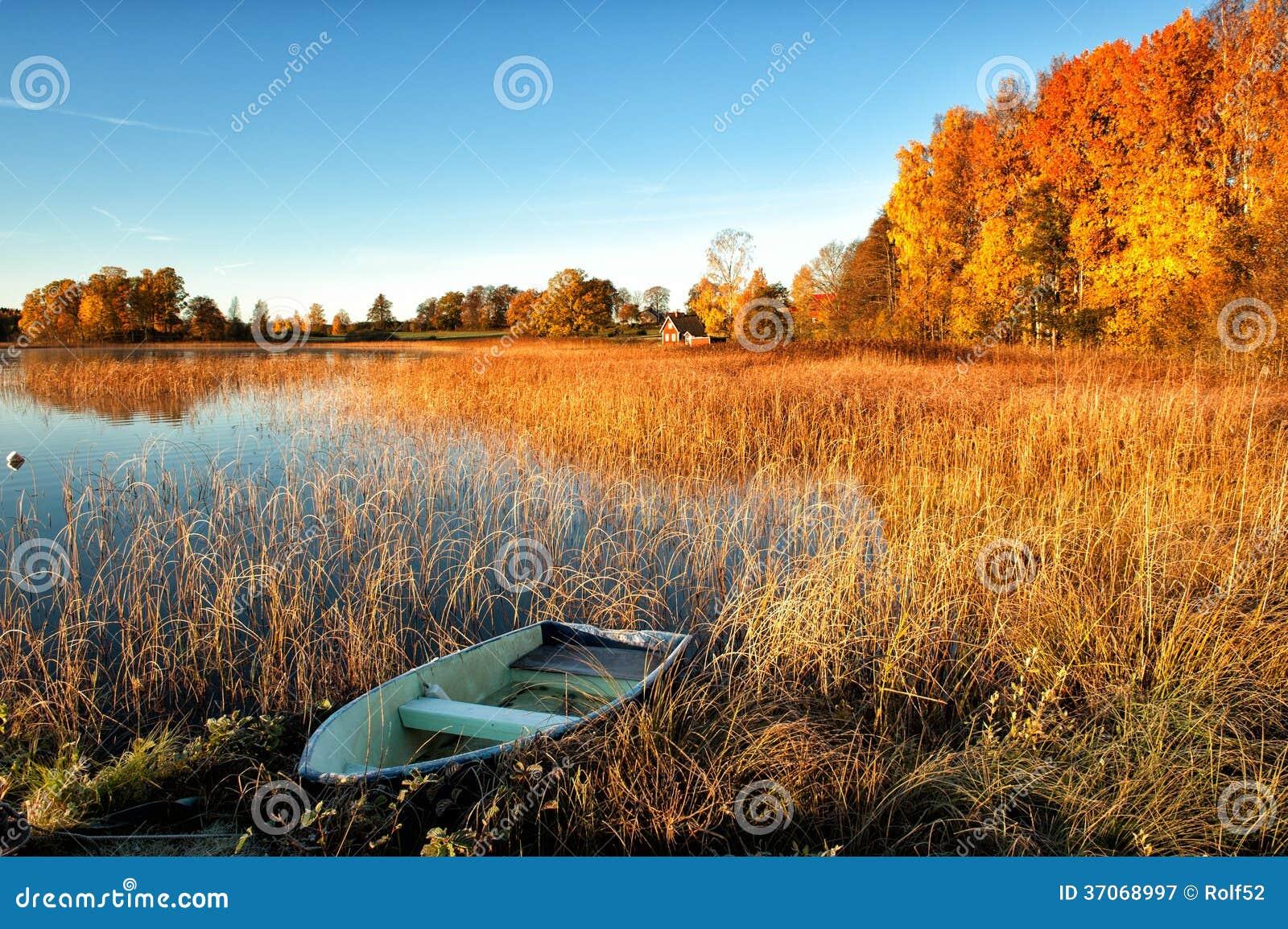 Manhã gloriosa do outono