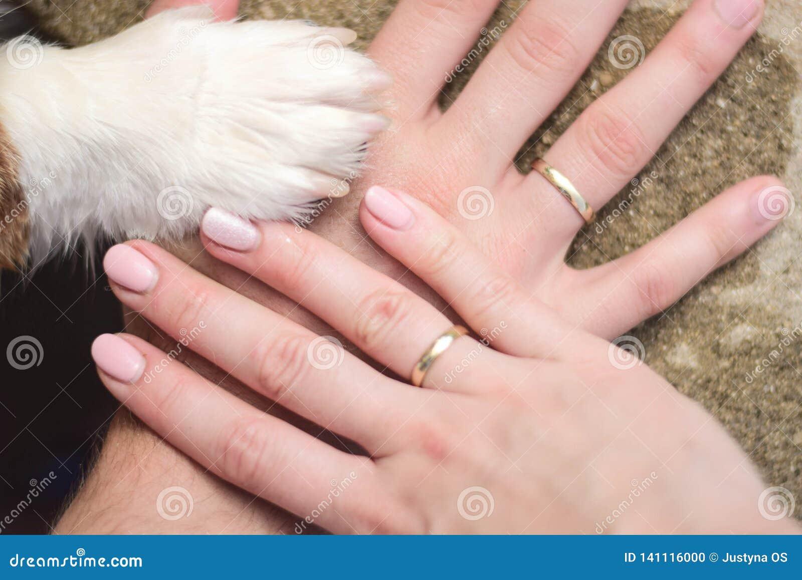 Mani etere sposate delle coppie con una zampa del cane come segno di una famiglia con un cane