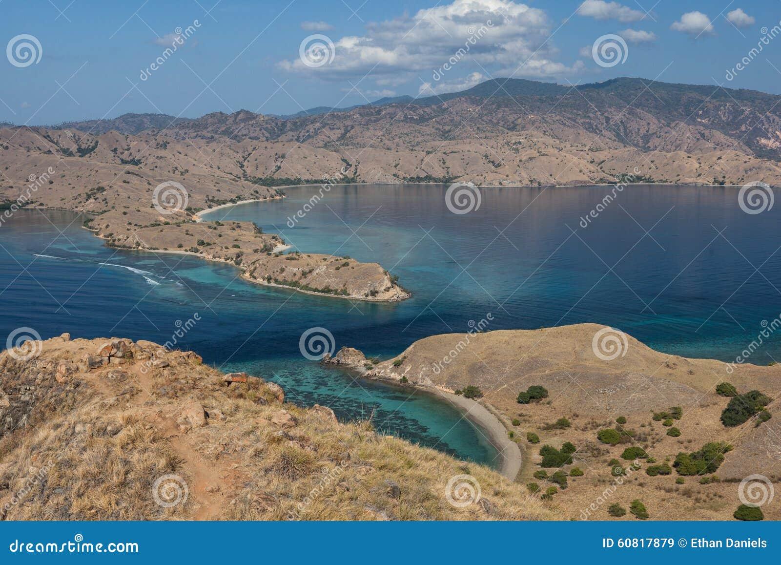 Manica nel parco nazionale di komodo fotografia stock for Bagno a ripoli dove si trova