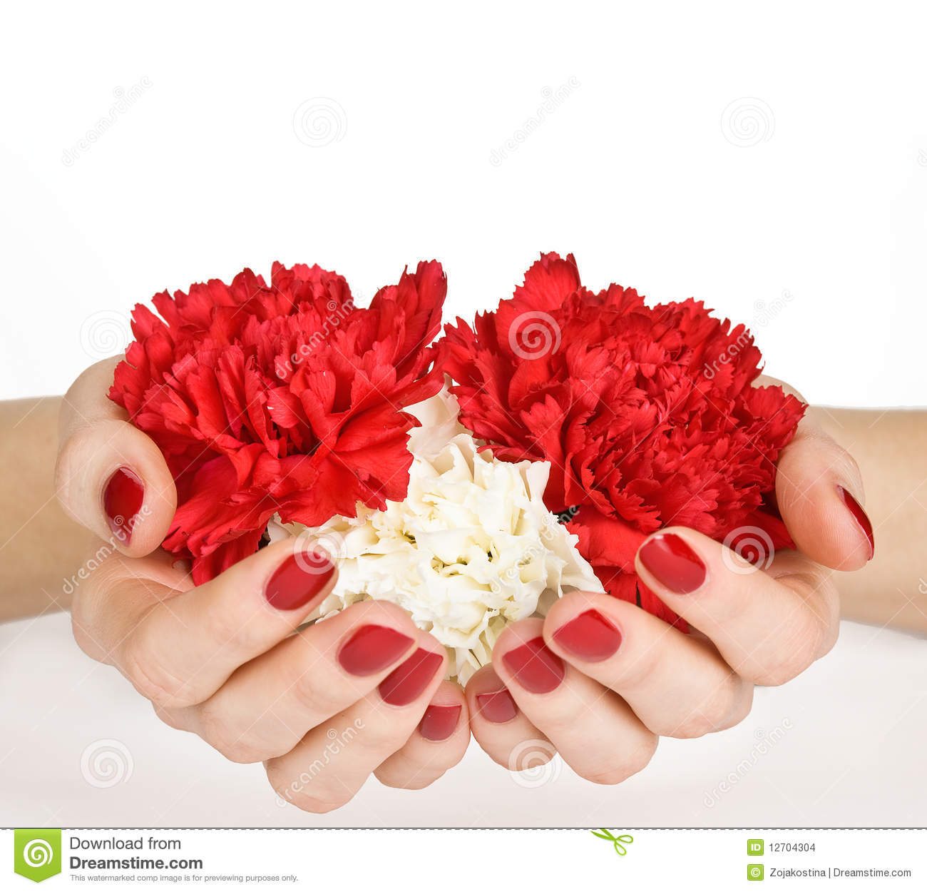 Manicure And Flower Heart Stock Images Image 12704304