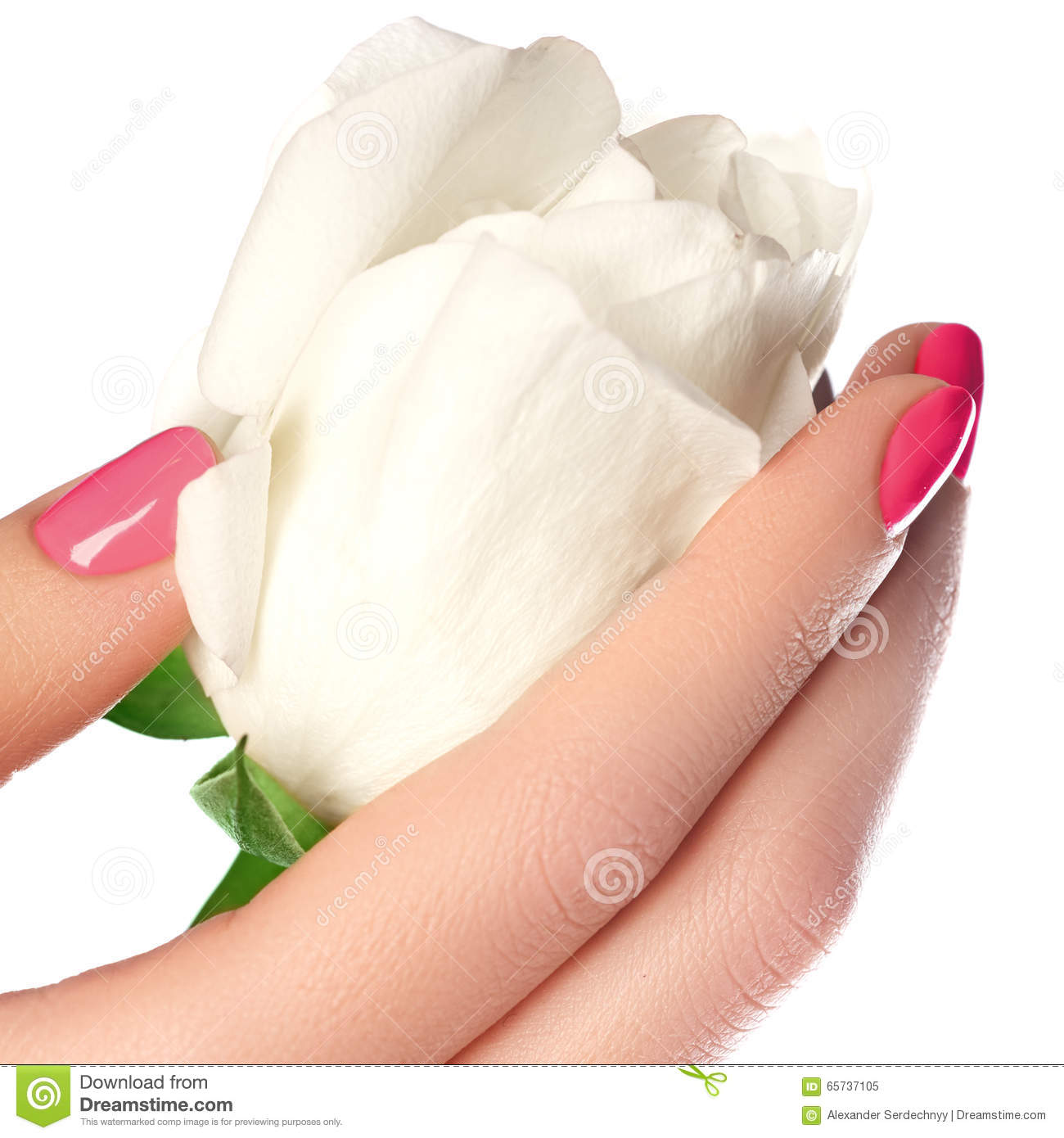 Free Manicure Beauty Hands Makeover: Manicure, Hands & Spa. Beautiful Woman Hands, Soft Skin