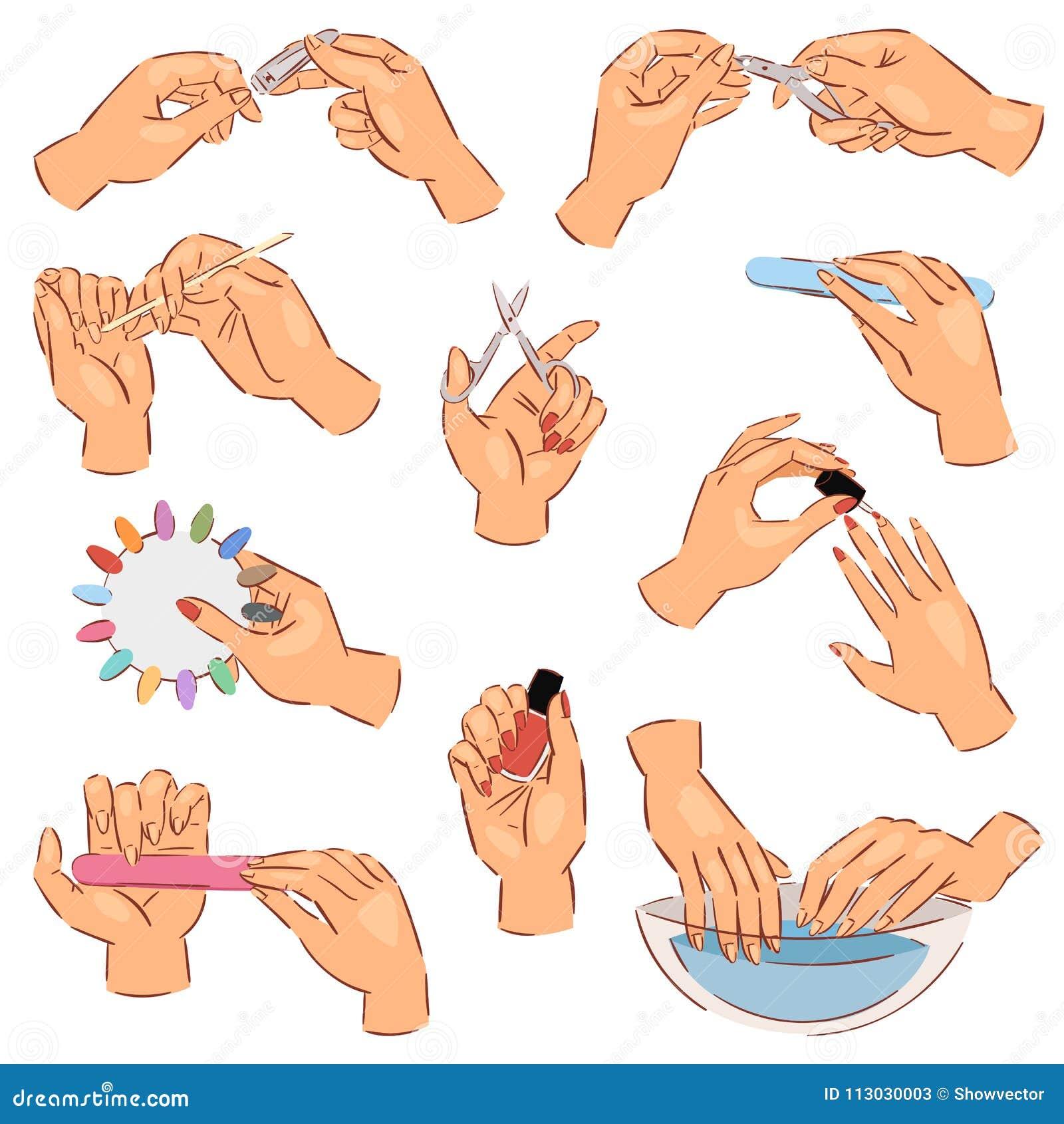 Manicure las manos manicured vector y las uñas manicuring con el fichero de clavo o las tijeras del manicuro en barra de clavo