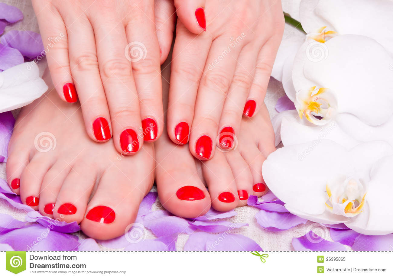 Manicure and pedicure stock image  Image of relaxation - 26395065