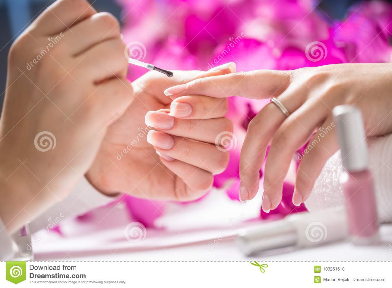 Manicure Specialist Painting Woman Gel Nail. Art - French Manicu ...