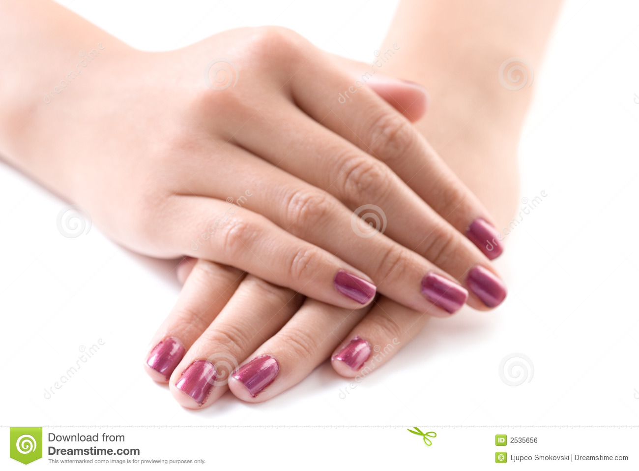 Manicured Female Hands Royalty Free Stock Image - Image: 2535656