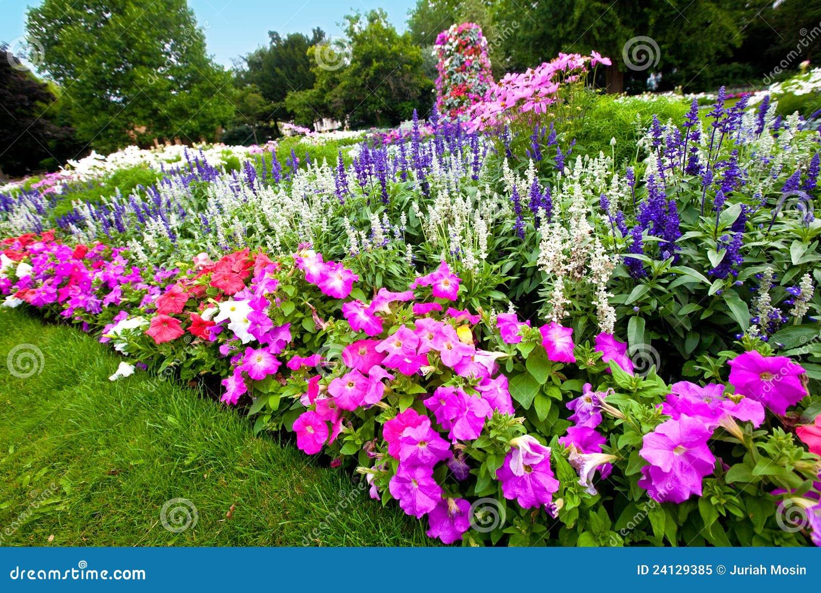 Manicured Flower Garden With Colorful Azaleas Royalty Free Stock Photo Ima