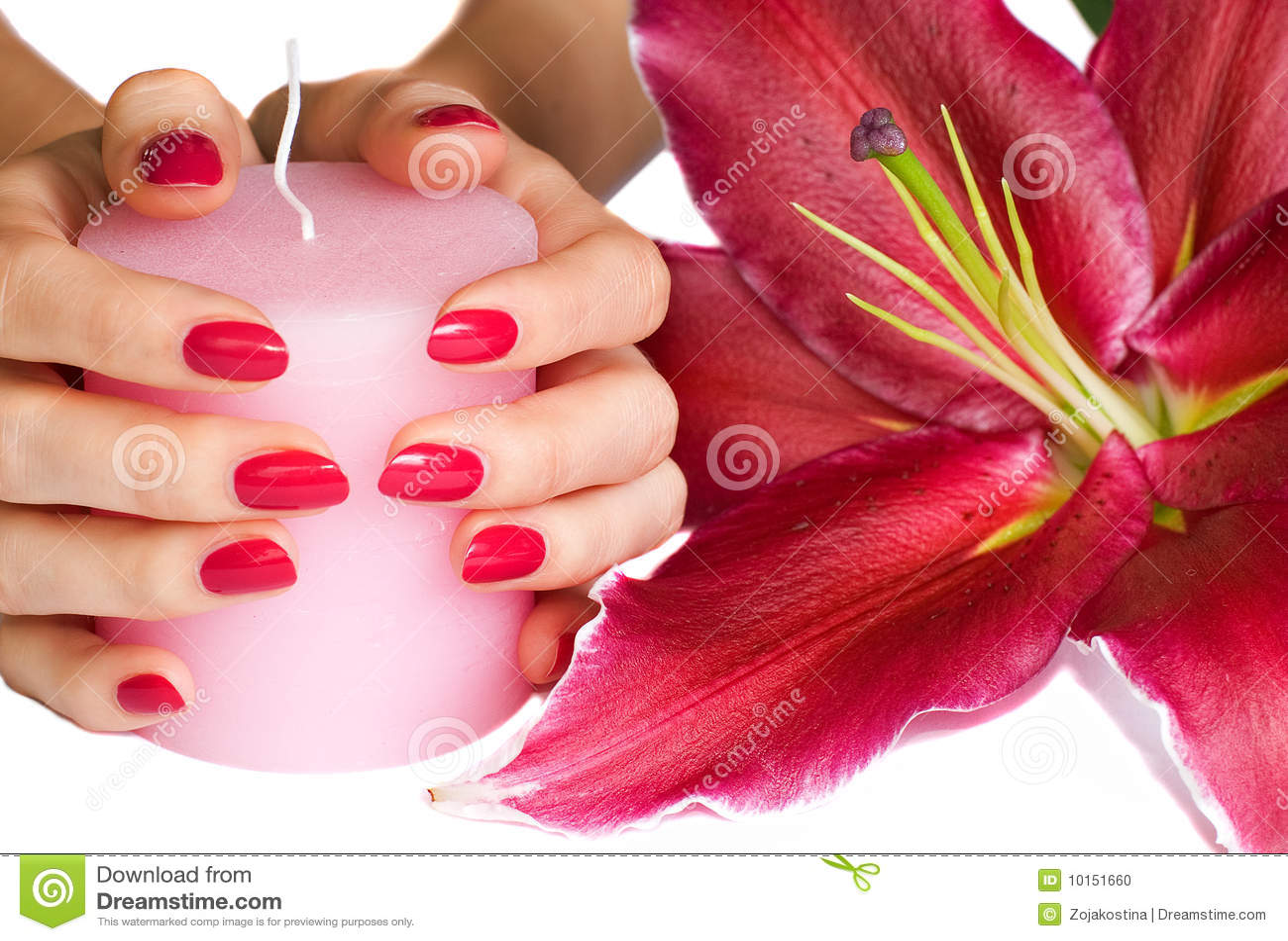 Perfect Manicure Nail Polish Woman Hands Stock Photo 443464984 ...