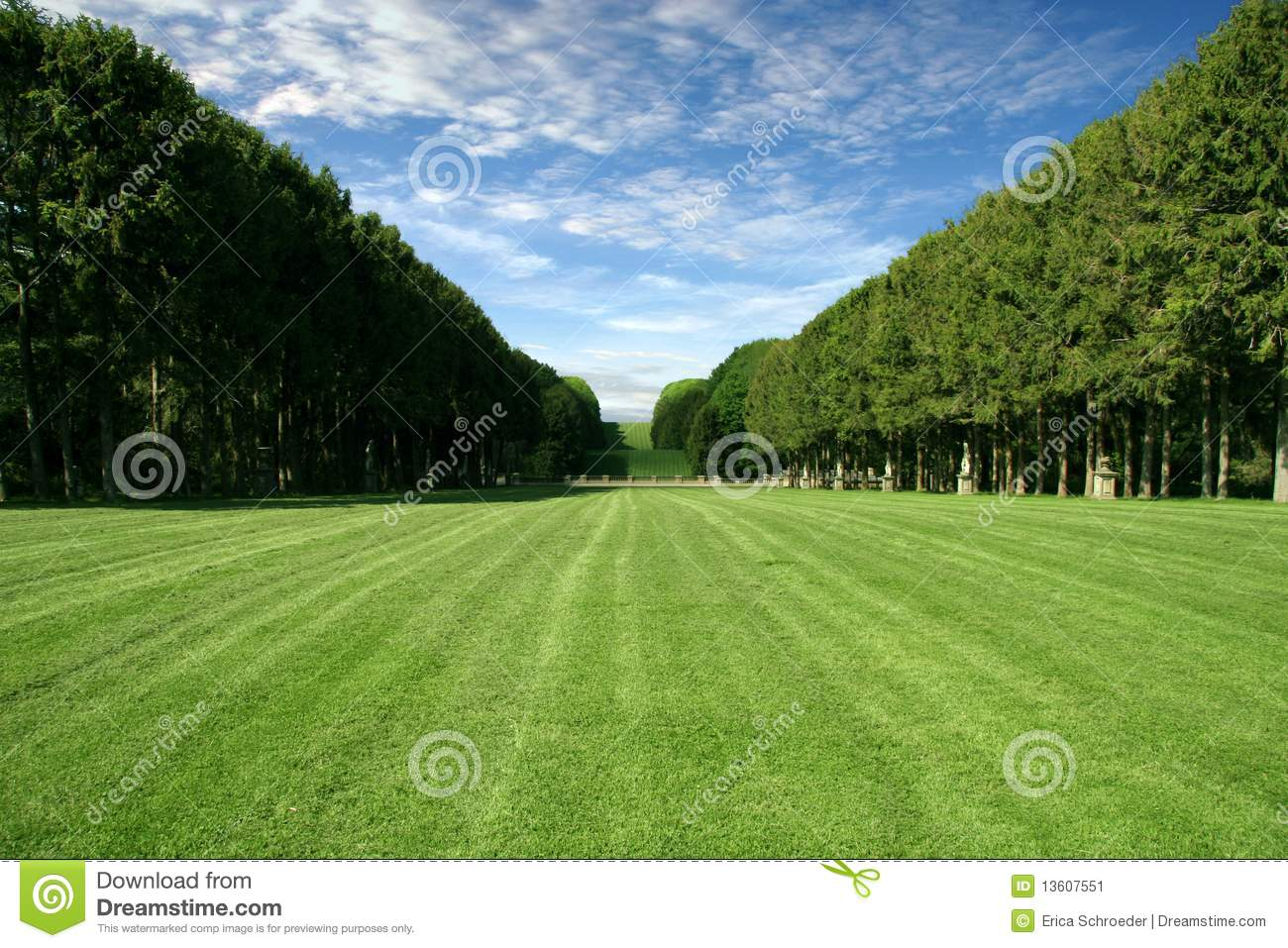 Manicured Lawn Large Green Field Stock Image Image