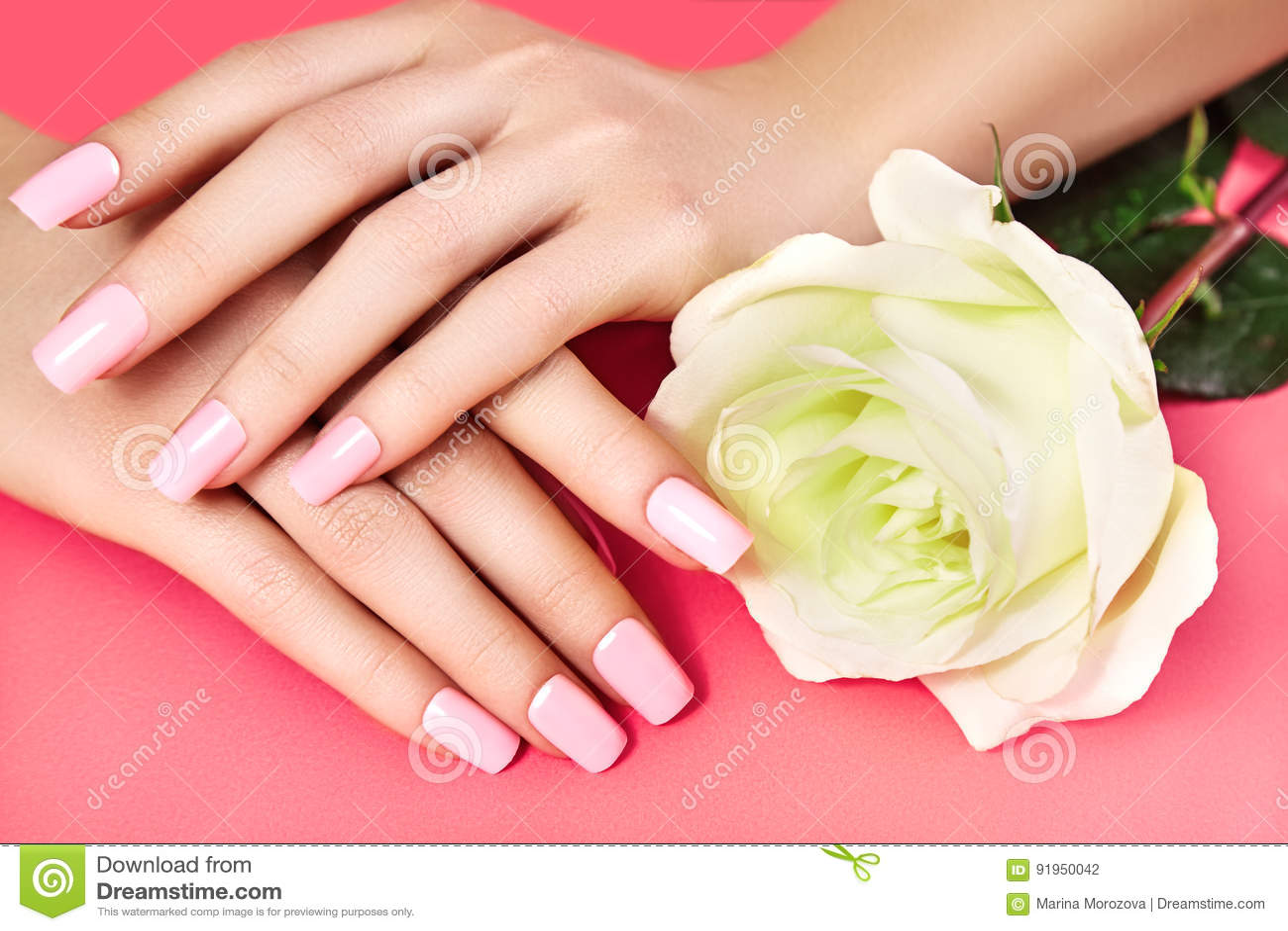 Manicured Nails With Pink Nail Polish Manicure With Nailpolish