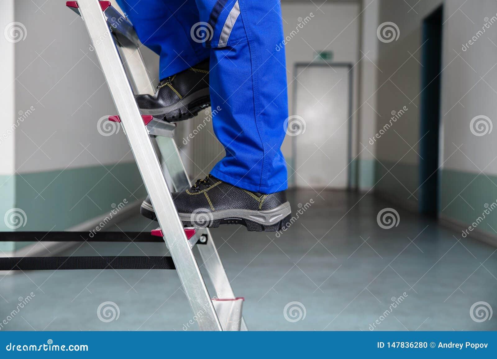 Manitas Climbing Ladder