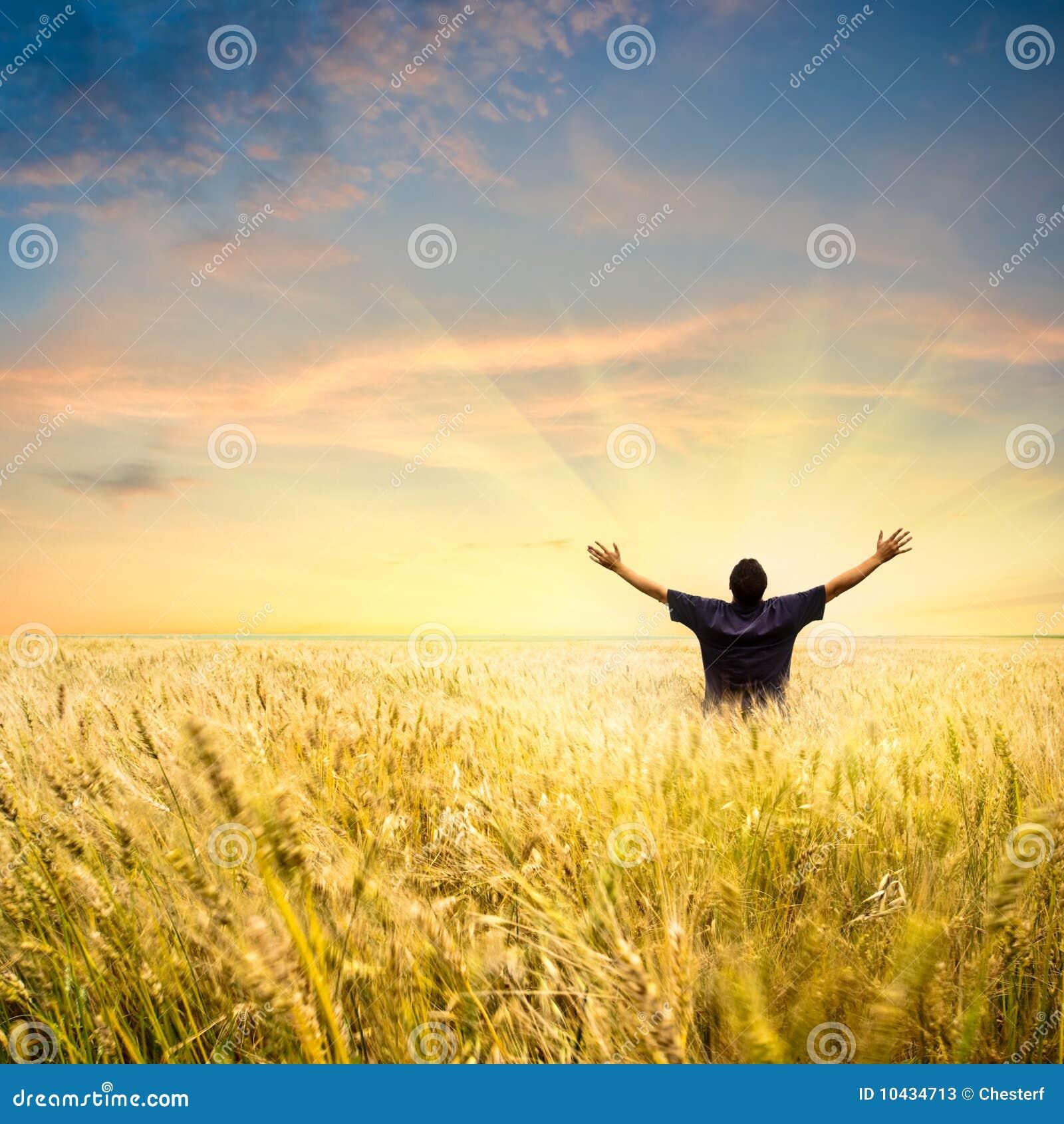 Mann auf dem Weizengebiet