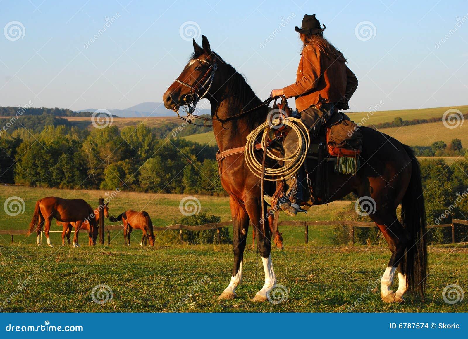 Mann, Der Auf Seinem Pferd Sitzt Stockfoto - Bild von