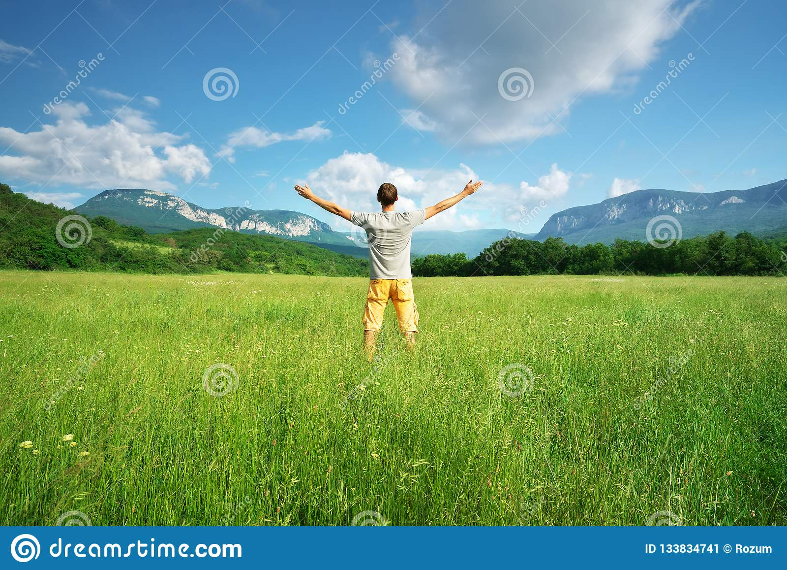 Mann in der grünen Wiese