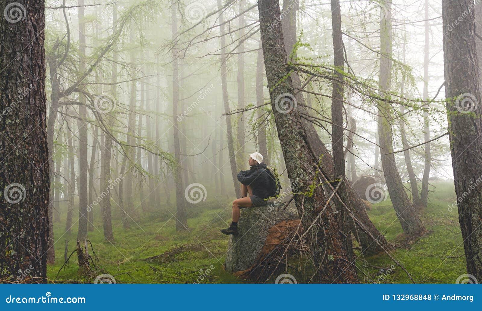 Mann, der im nebelhaften Wald, italienische Alpen sitzt