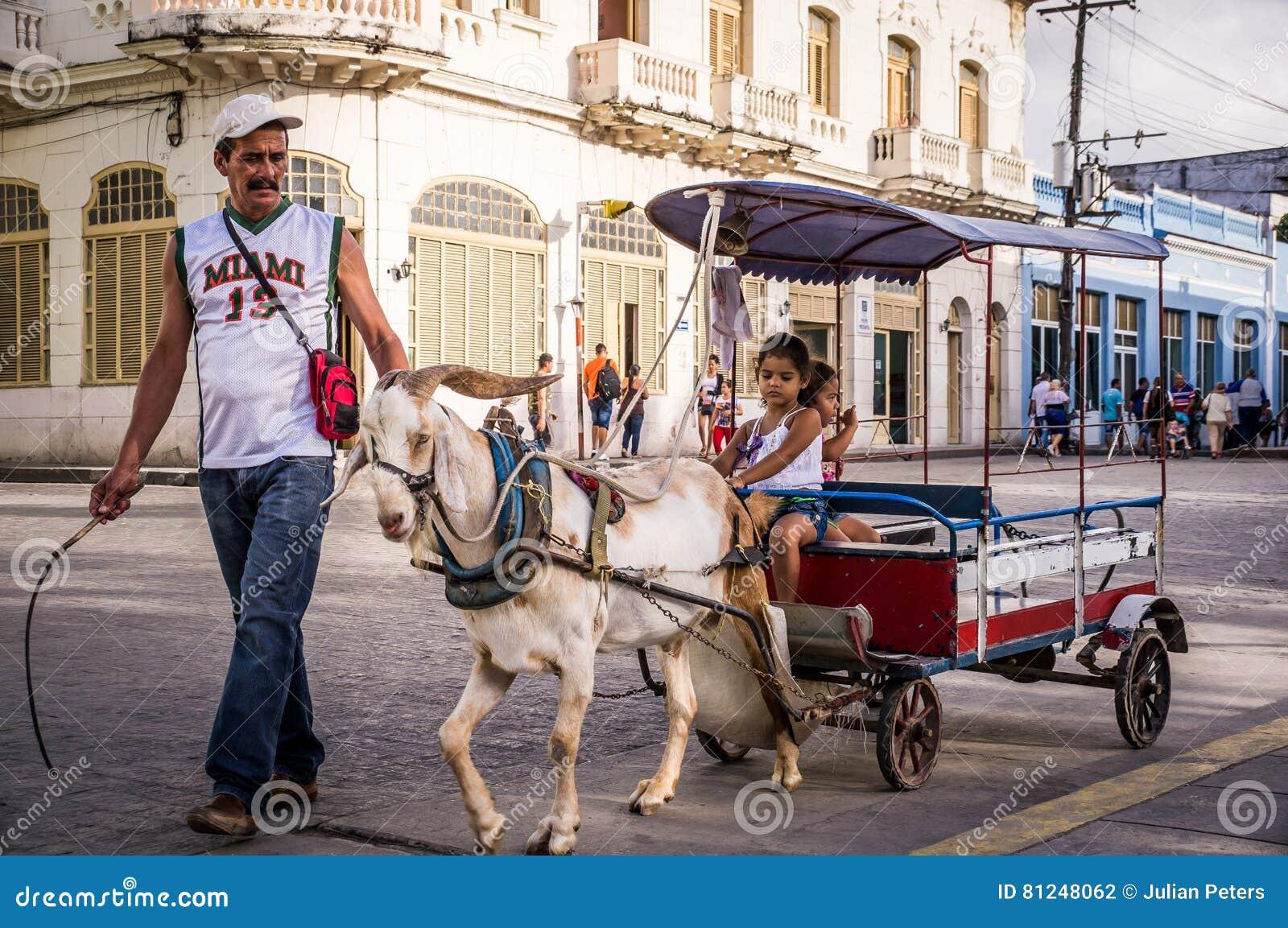 Mann mit leitender Ziege der Peitsche, die Kinder im Wagen zieht