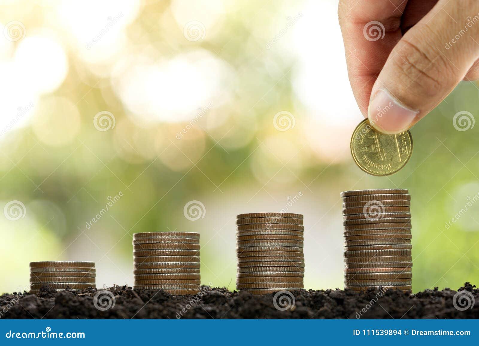 Mannelijke hand die de stapel groeiende zaken zetten van het geldmuntstuk