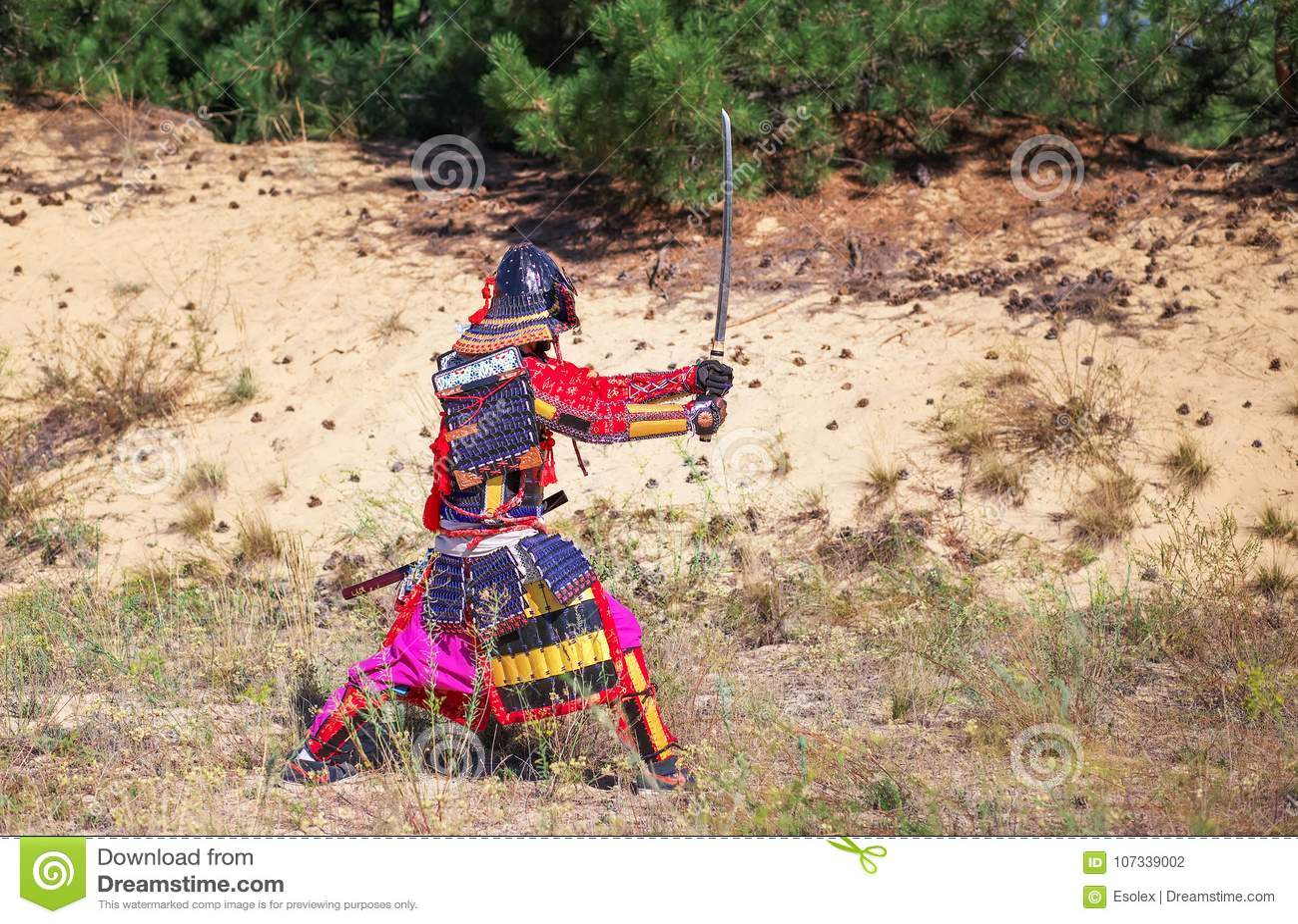 Mannen i samurajer armerar med svärdet som är klart att slåss