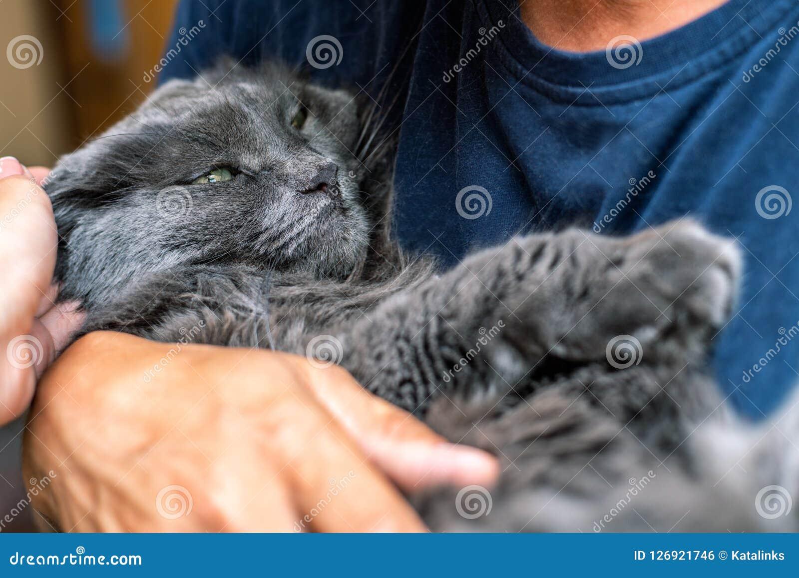 Mannen kramar katten som rymmer det i hans armar
