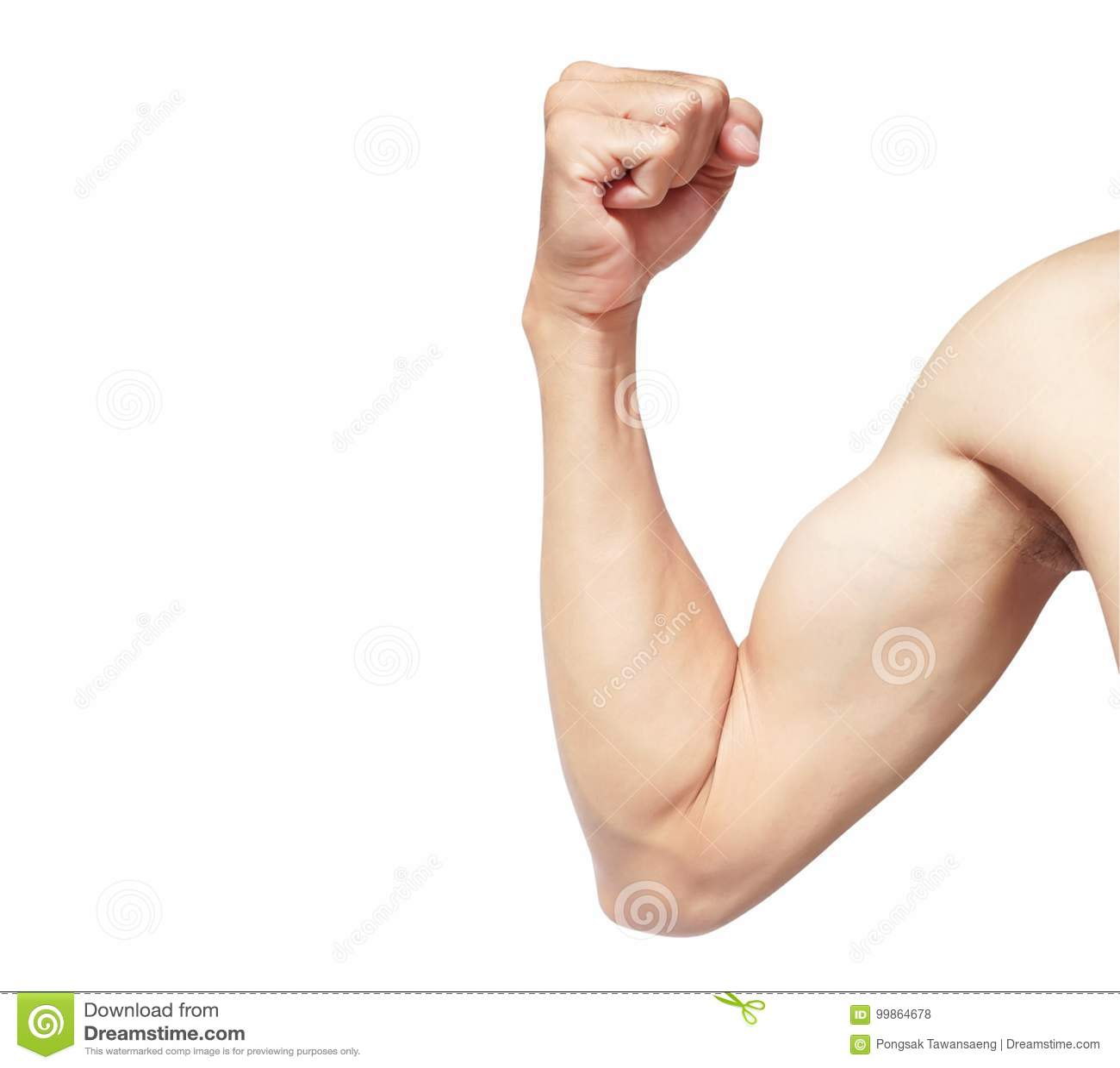 Mannmuskel des starken Armes lokalisiert auf weißem Hintergrund mit Ausschnitt