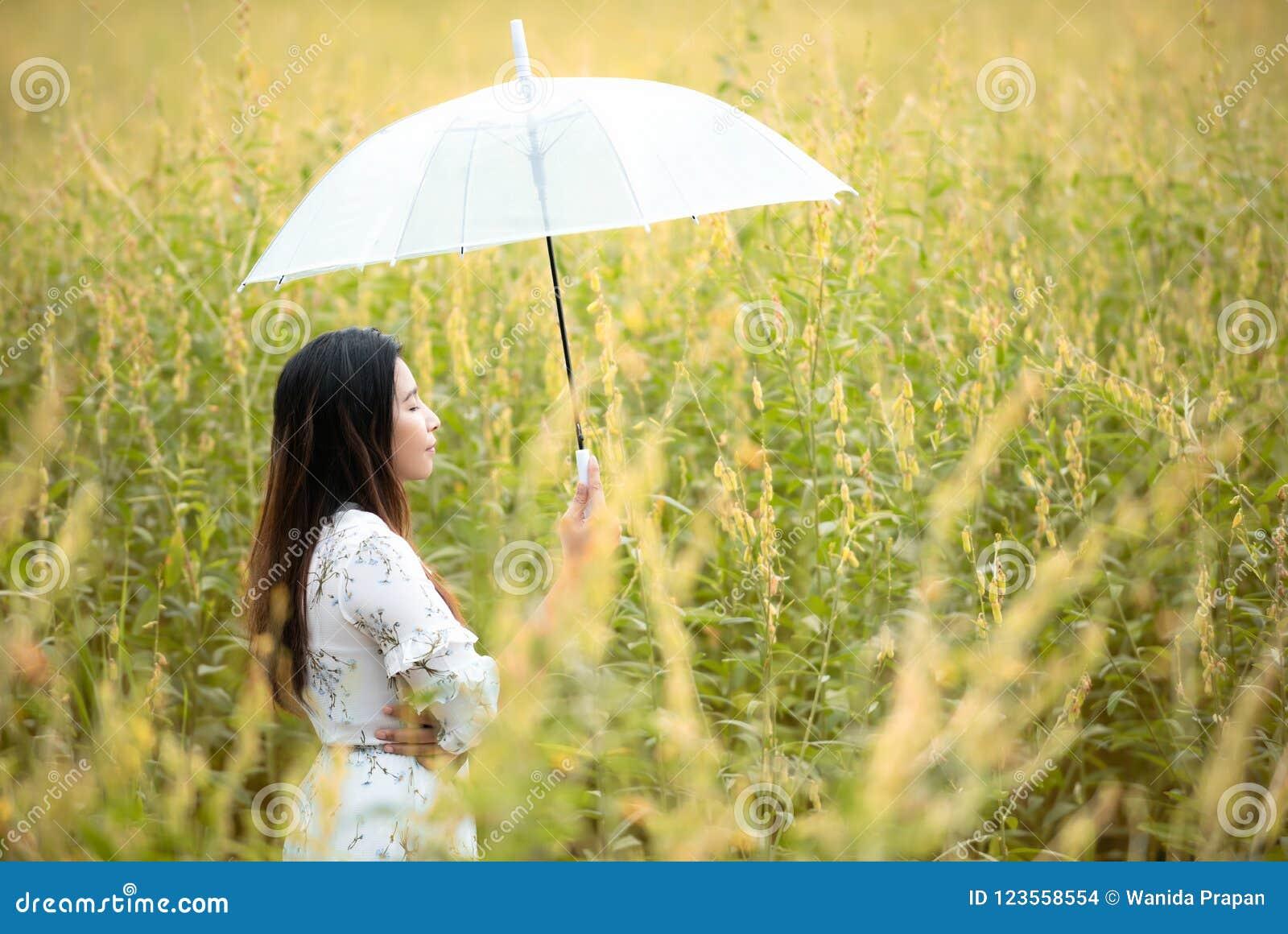 Mano asiática feliz de la forma de vida de la mujer que sostiene el paraguas en la salida del sol de la flor del amarillo del oto
