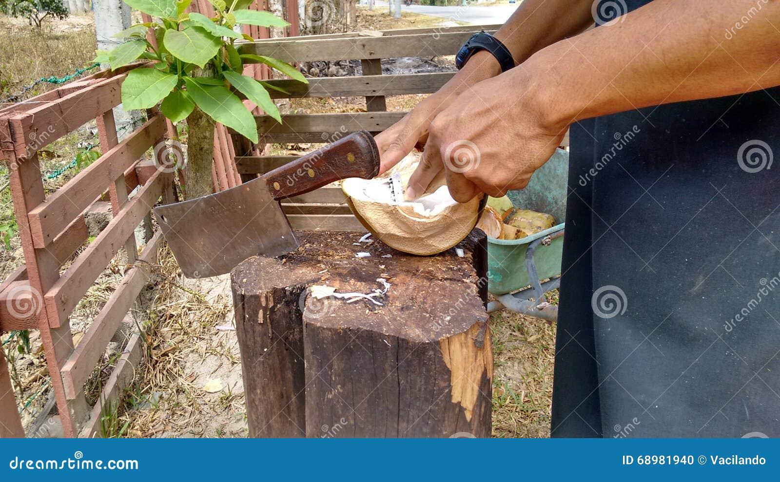 Mano de la carne de coco del hombre que raspa