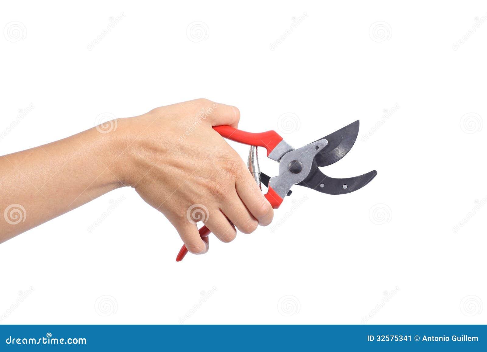 Mano de la mujer sosteniendo las tijeras de podar abiertas - Tijeras para podar ...