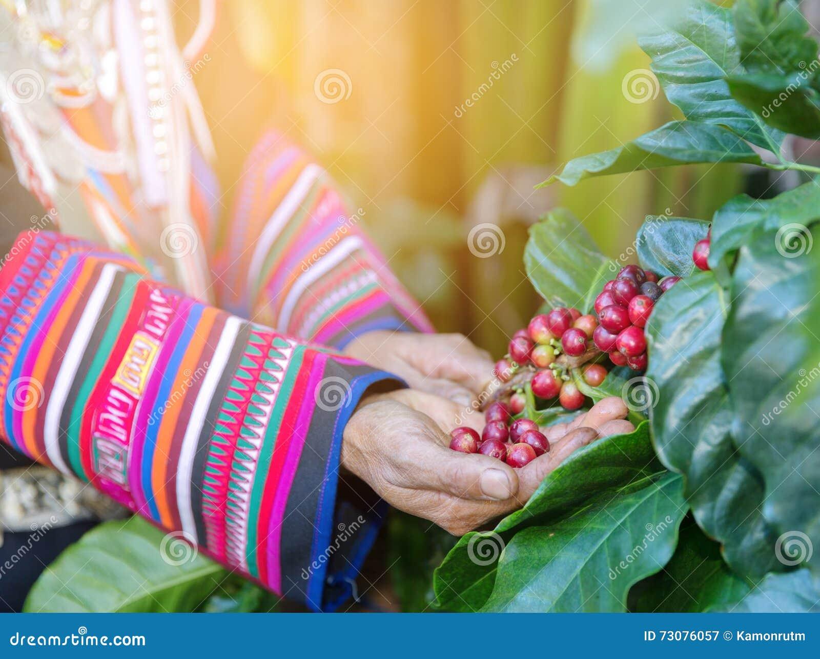 Pantenol ayuda de los granos sobre la persona