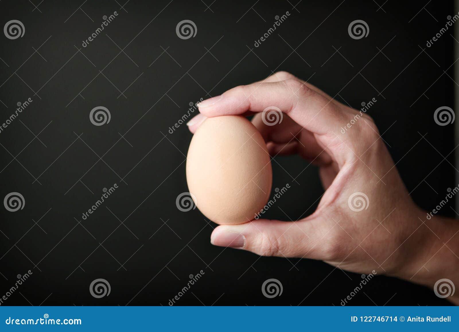 Mano derecha que sostiene un huevo de Brown